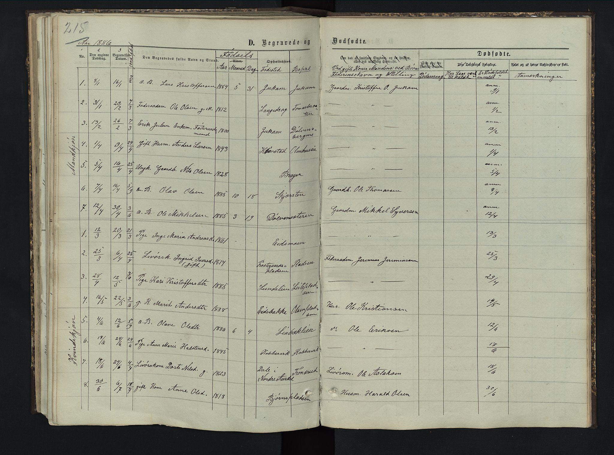 SAH, Sør-Aurdal prestekontor, Klokkerbok nr. 5, 1866-1893, s. 215