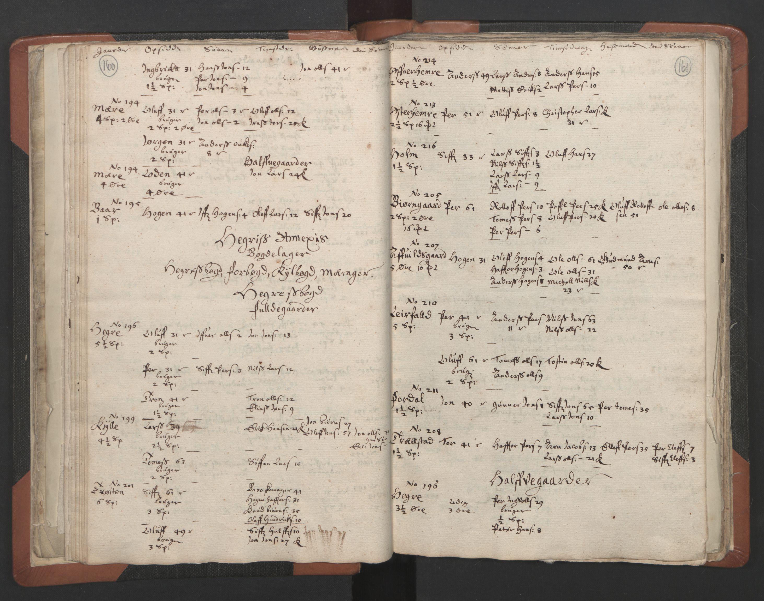 RA, Sogneprestenes manntall 1664-1666, nr. 32: Innherad prosti, 1664-1666, s. 160-161