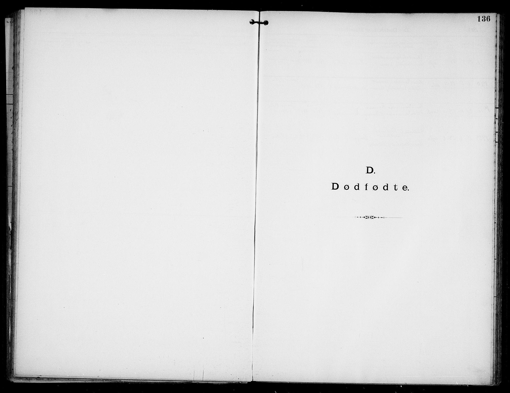 SAO, Den katolsk apostoliske menighet i Oslo , F/Fa/L0002: Dissenterprotokoll nr. 2, 1892-1937, s. 136