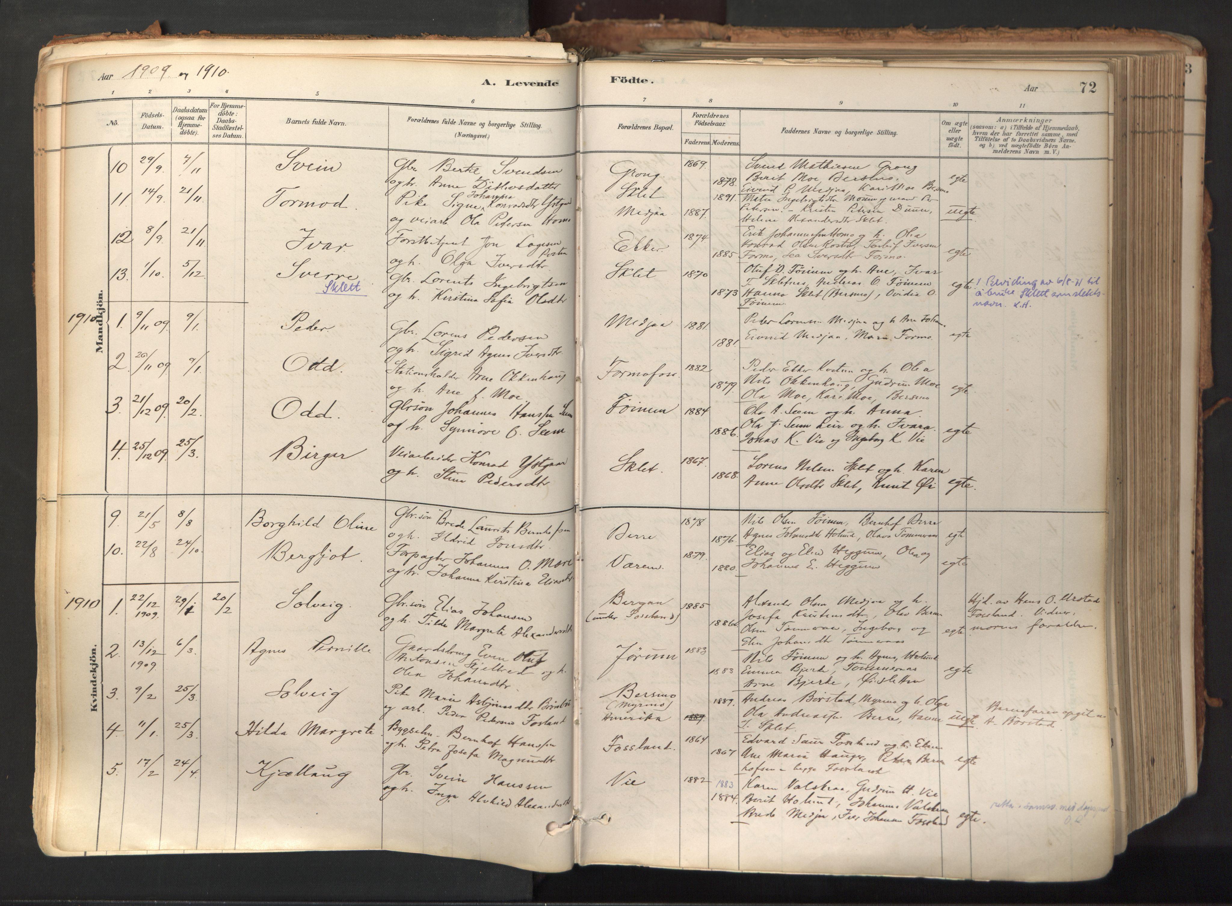 SAT, Ministerialprotokoller, klokkerbøker og fødselsregistre - Nord-Trøndelag, 758/L0519: Ministerialbok nr. 758A04, 1880-1926, s. 72
