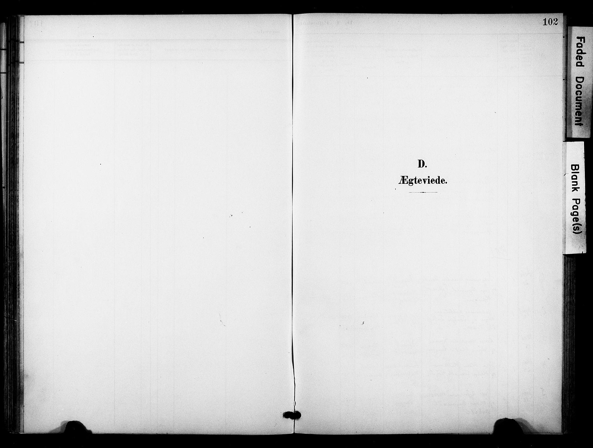 SAKO, Bø kirkebøker, F/Fa/L0012: Ministerialbok nr. 12, 1900-1908, s. 102