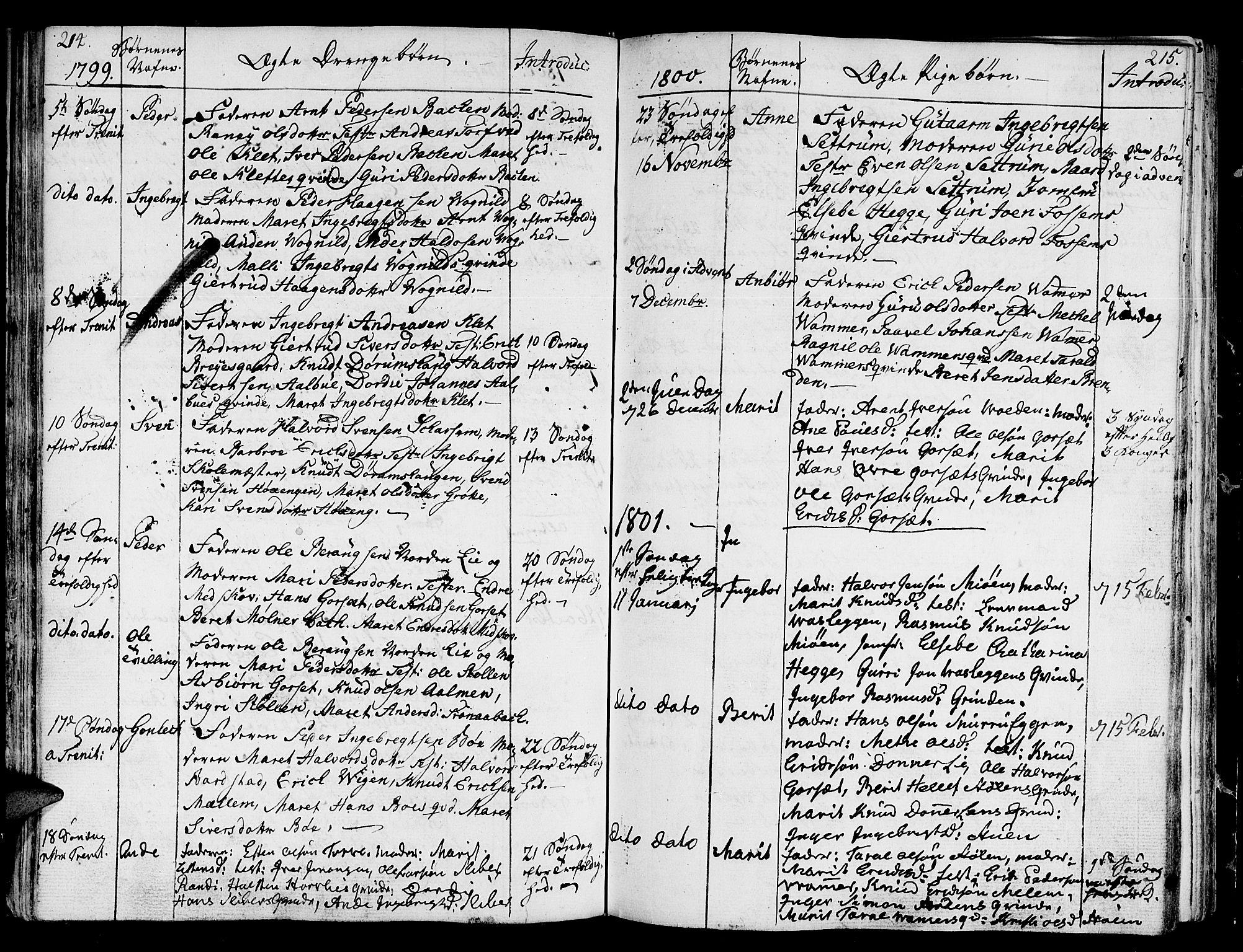 SAT, Ministerialprotokoller, klokkerbøker og fødselsregistre - Sør-Trøndelag, 678/L0893: Ministerialbok nr. 678A03, 1792-1805, s. 214-215