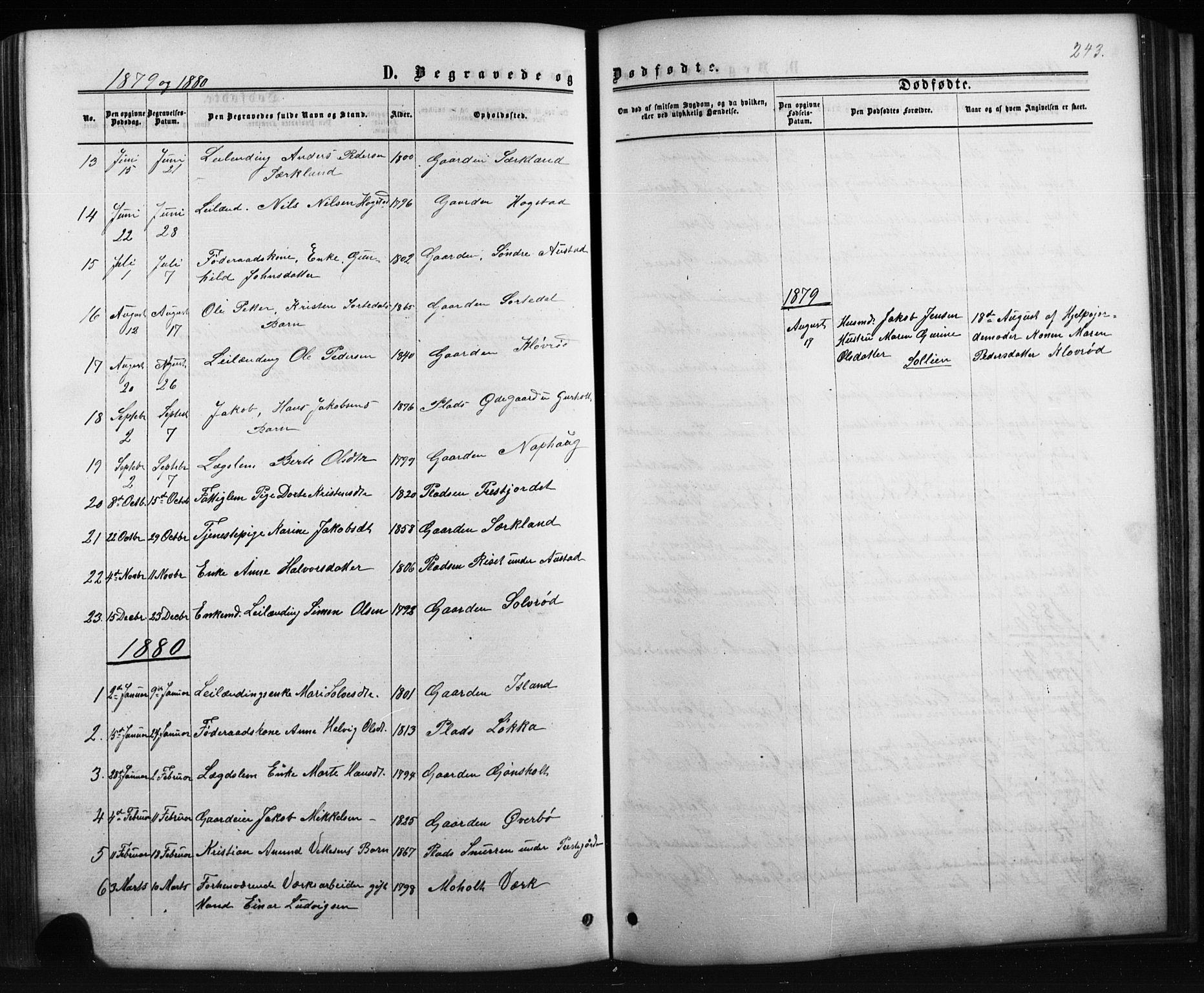 SAKO, Siljan kirkebøker, G/Ga/L0002: Klokkerbok nr. 2, 1864-1908, s. 243