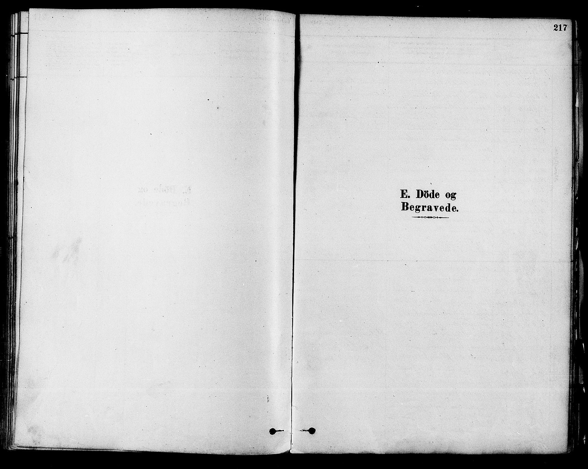 SAKO, Modum kirkebøker, F/Fa/L0011: Ministerialbok nr. 11, 1877-1889, s. 217
