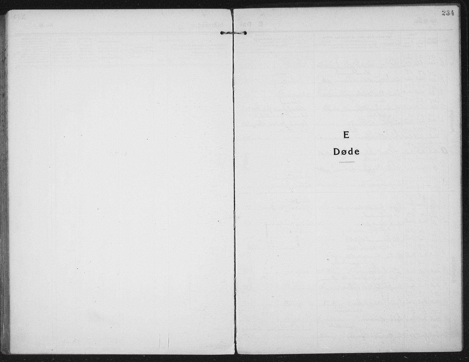 SAT, Ministerialprotokoller, klokkerbøker og fødselsregistre - Nord-Trøndelag, 709/L0083: Ministerialbok nr. 709A23, 1916-1928, s. 234