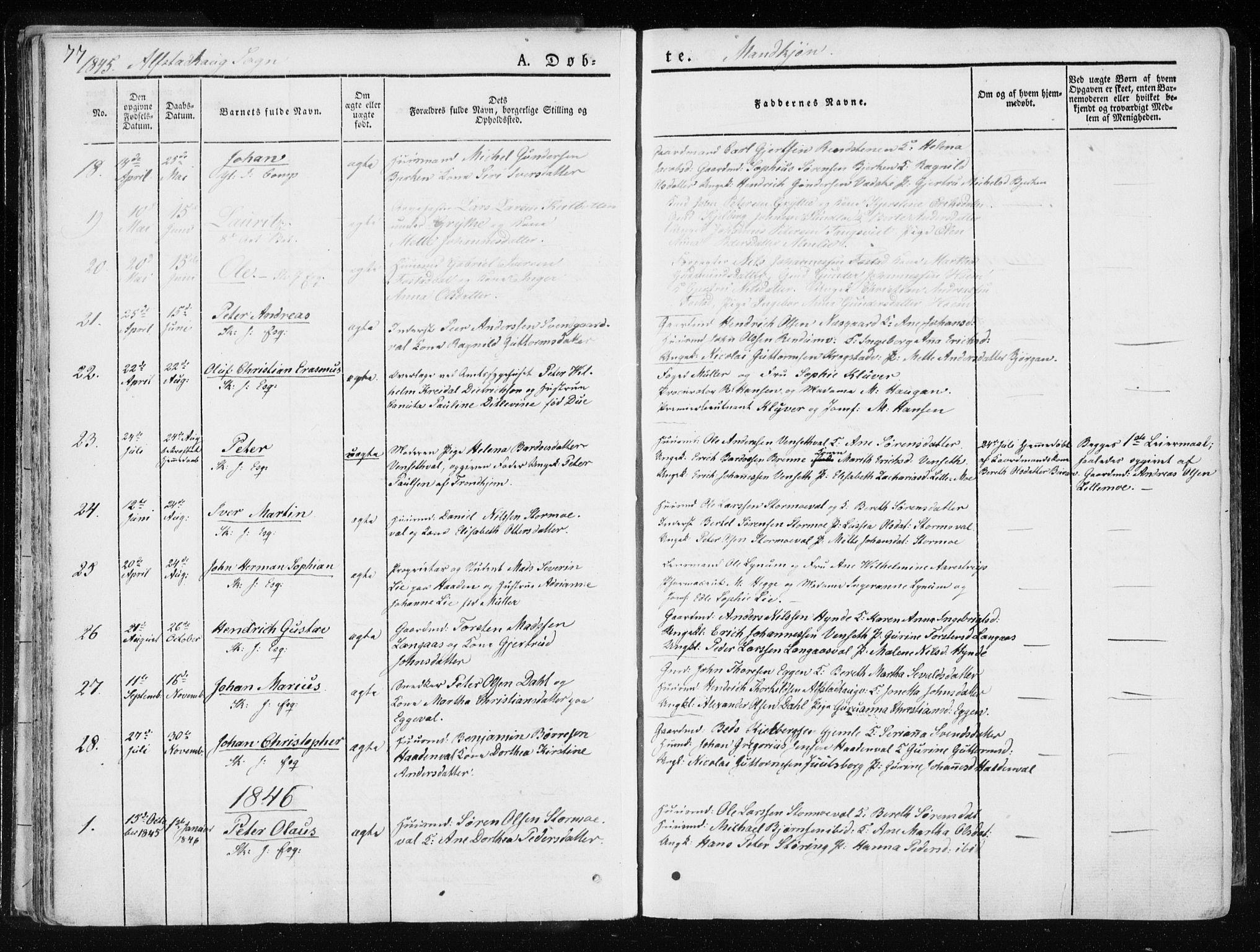 SAT, Ministerialprotokoller, klokkerbøker og fødselsregistre - Nord-Trøndelag, 717/L0154: Ministerialbok nr. 717A06 /1, 1836-1849, s. 77