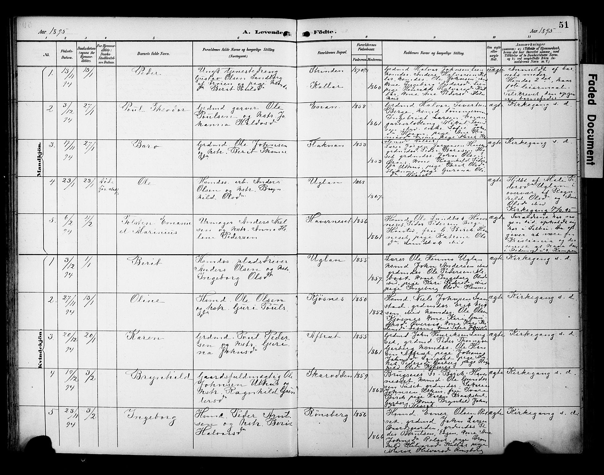 SAT, Ministerialprotokoller, klokkerbøker og fødselsregistre - Sør-Trøndelag, 695/L1149: Ministerialbok nr. 695A09, 1891-1902, s. 51