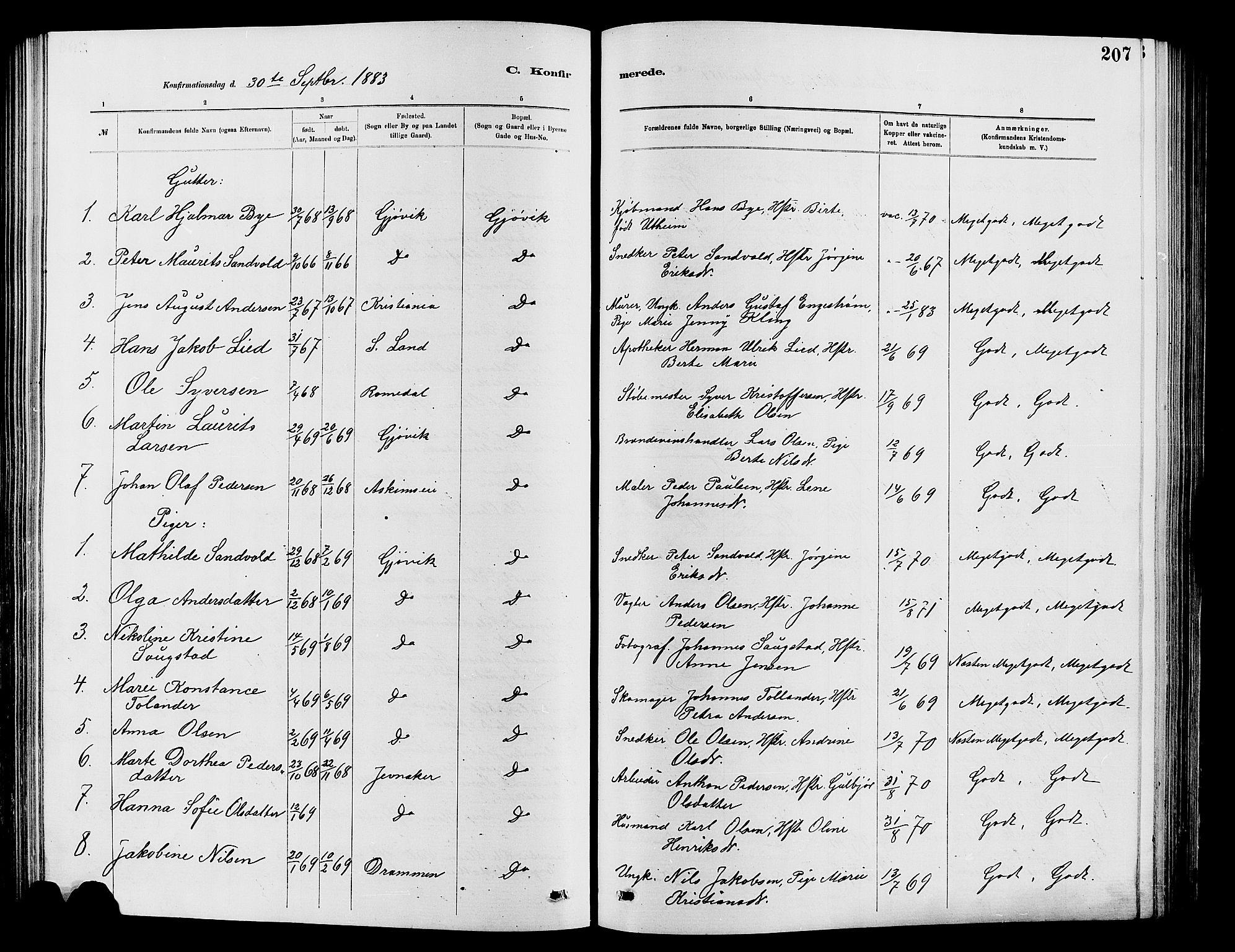 SAH, Vardal prestekontor, H/Ha/Hab/L0007: Klokkerbok nr. 7 /2, 1881-1895, s. 207