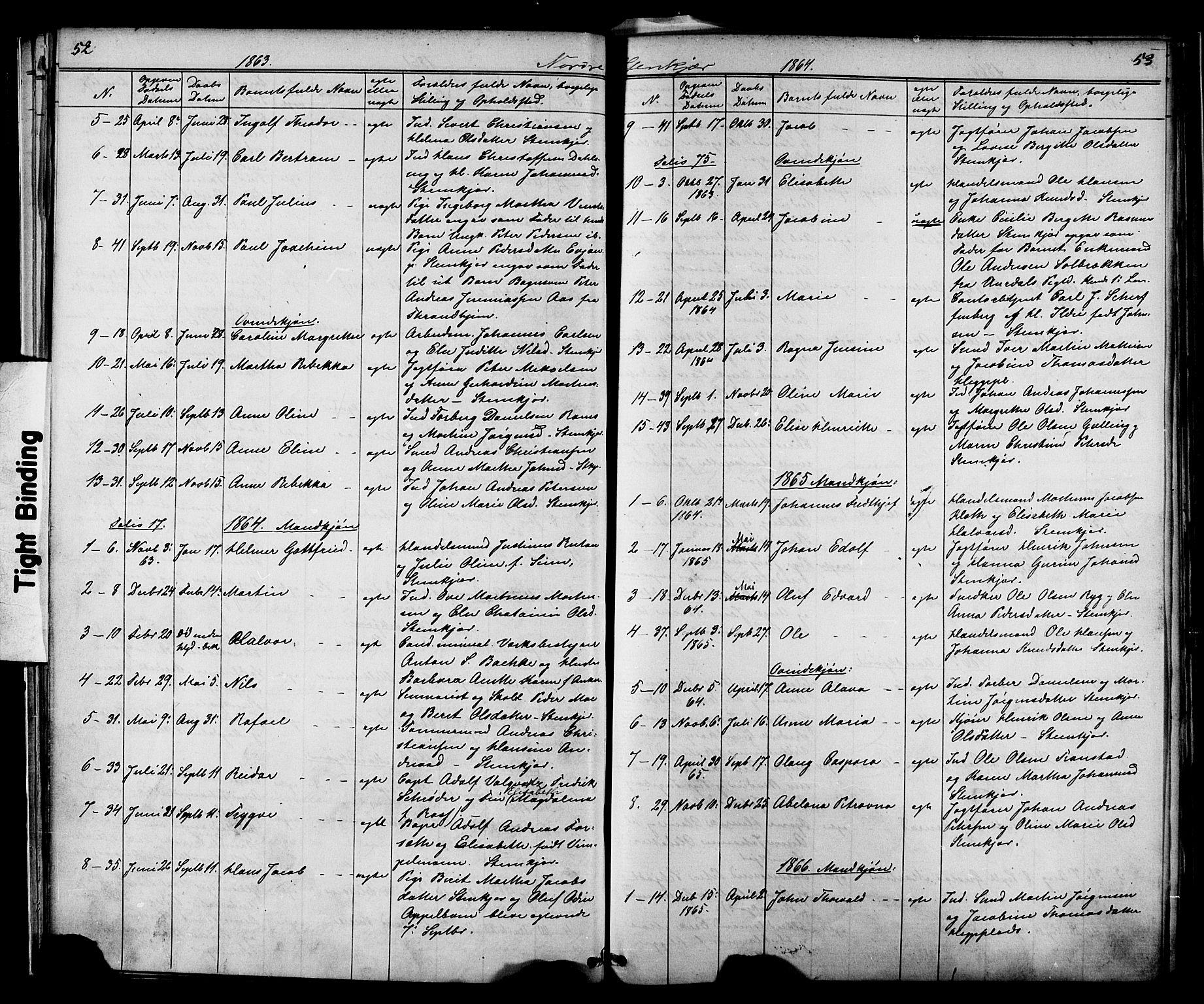 SAT, Ministerialprotokoller, klokkerbøker og fødselsregistre - Nord-Trøndelag, 739/L0367: Ministerialbok nr. 739A01 /2, 1838-1868, s. 52-53