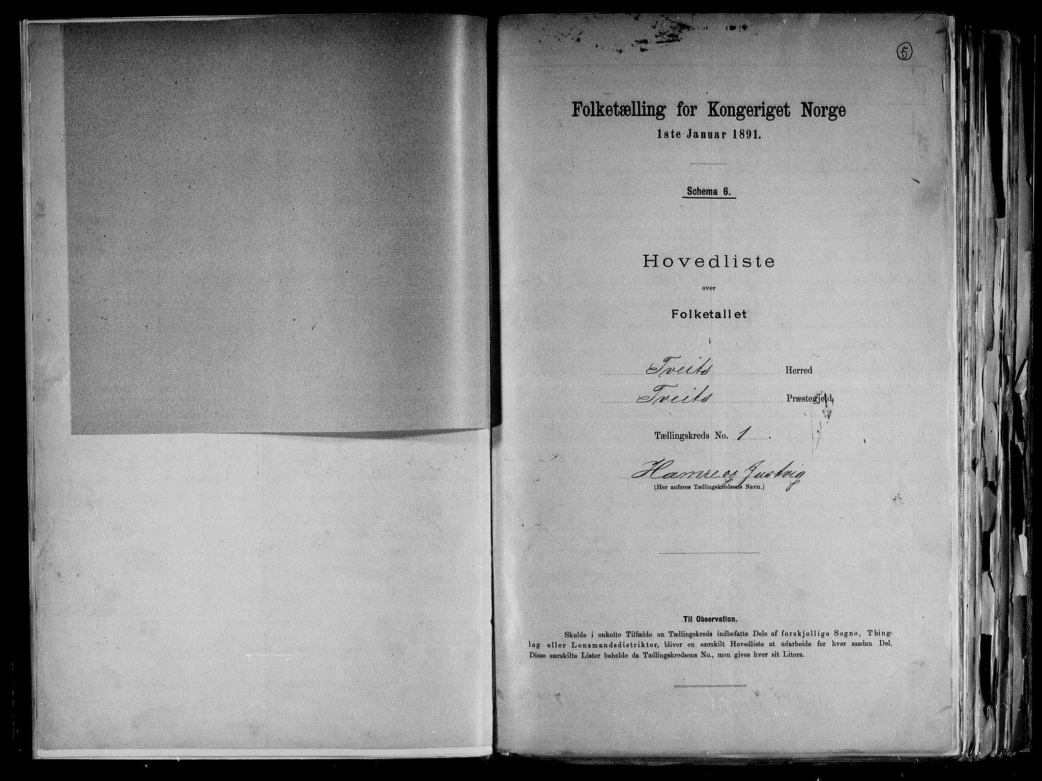 RA, Folketelling 1891 for 1013 Tveit herred, 1891, s. 5