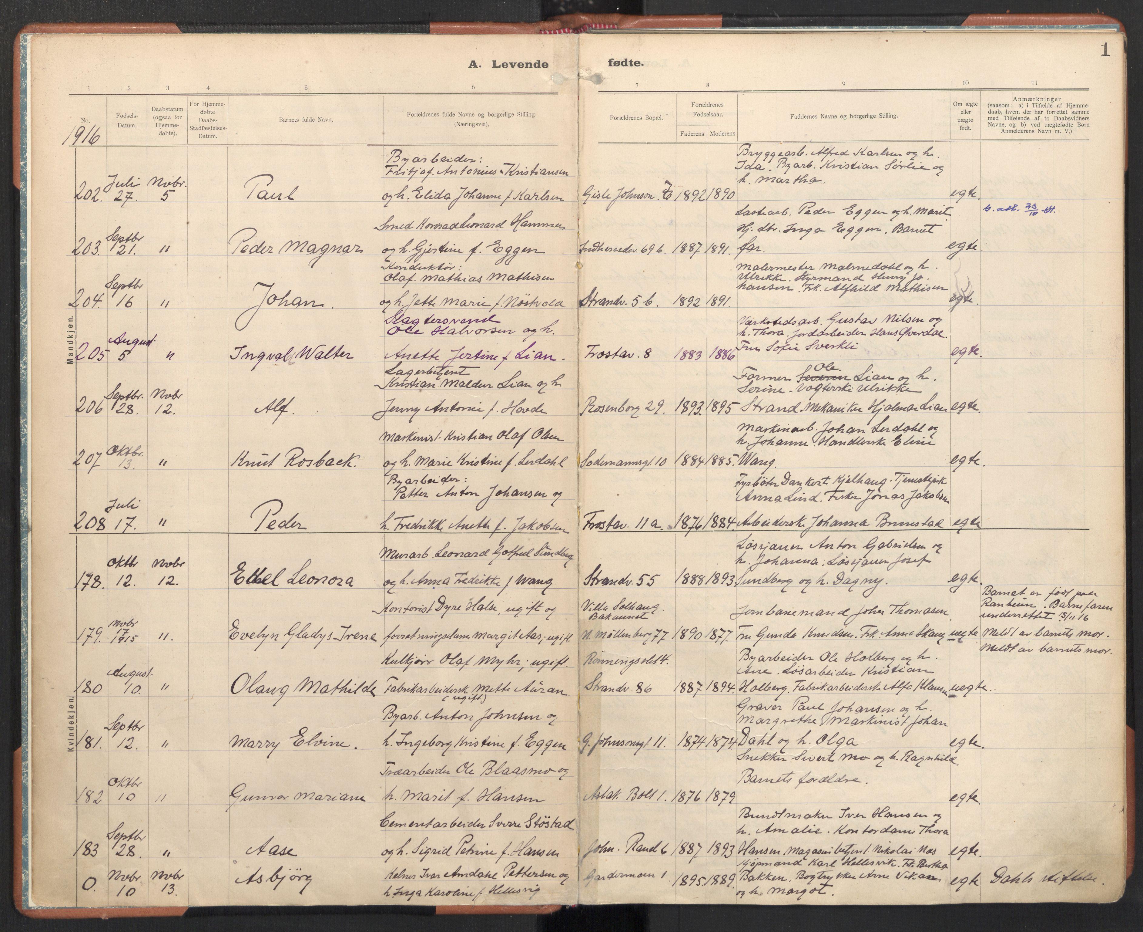 SAT, Ministerialprotokoller, klokkerbøker og fødselsregistre - Sør-Trøndelag, 605/L0246: Ministerialbok nr. 605A08, 1916-1920, s. 1