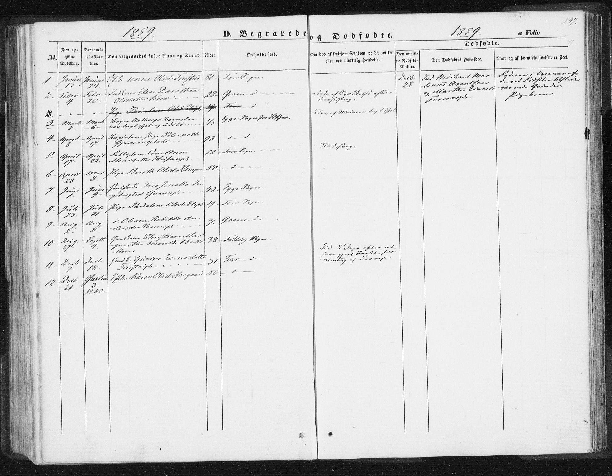 SAT, Ministerialprotokoller, klokkerbøker og fødselsregistre - Nord-Trøndelag, 746/L0446: Ministerialbok nr. 746A05, 1846-1859, s. 247