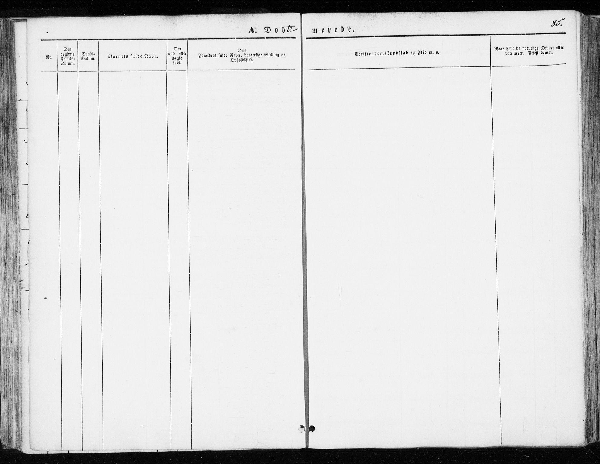 SAT, Ministerialprotokoller, klokkerbøker og fødselsregistre - Sør-Trøndelag, 655/L0677: Ministerialbok nr. 655A06, 1847-1860, s. 85