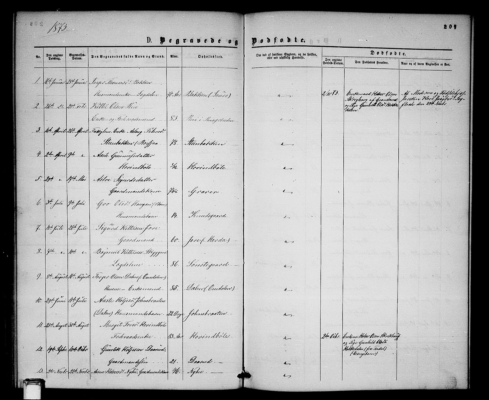 SAKO, Gransherad kirkebøker, G/Gb/L0002: Klokkerbok nr. II 2, 1860-1886, s. 207