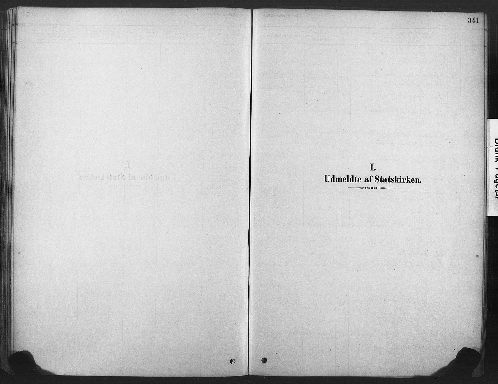 SAKO, Våle kirkebøker, F/Fa/L0011: Ministerialbok nr. I 11, 1878-1906, s. 341