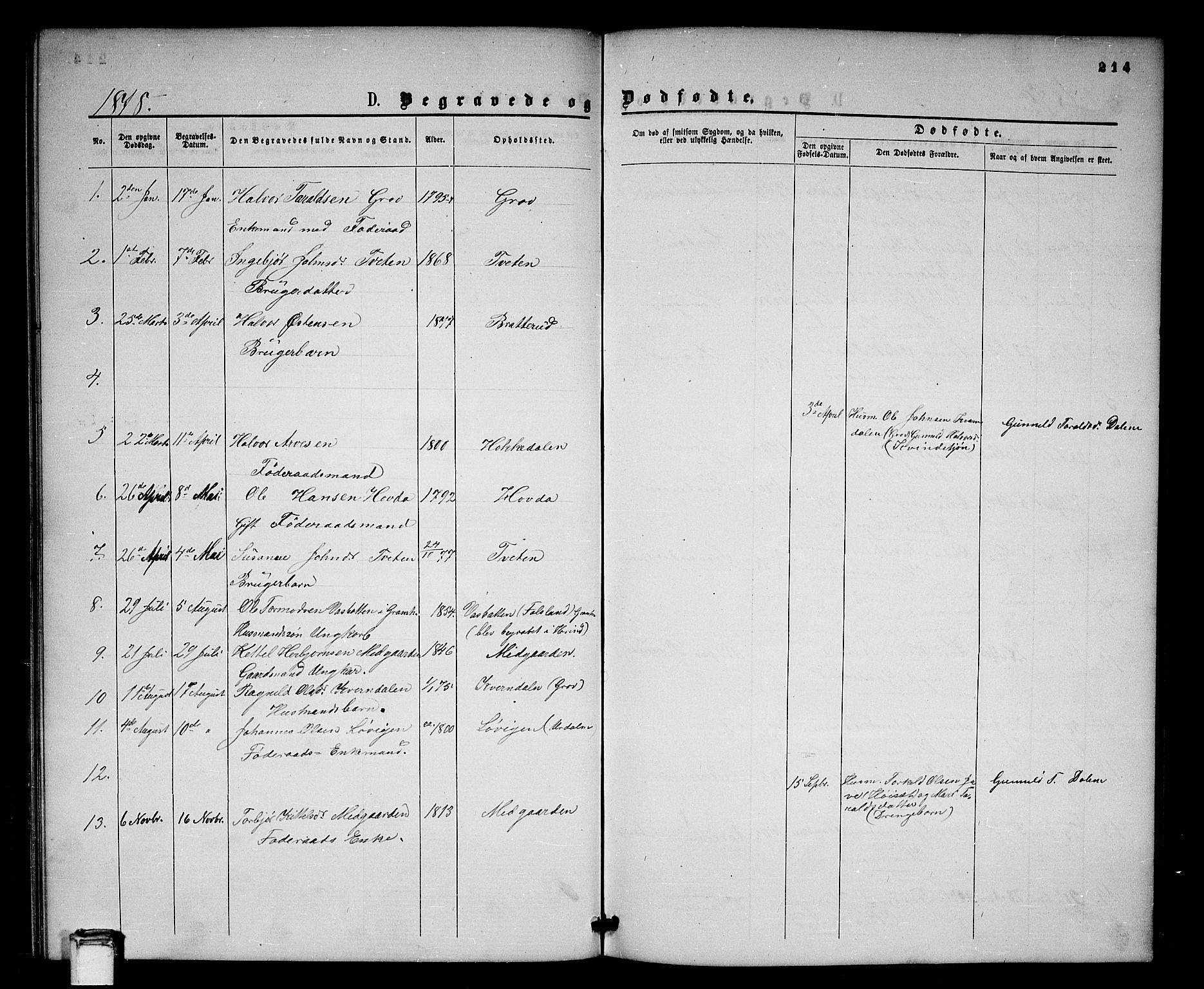 SAKO, Gransherad kirkebøker, G/Gb/L0002: Klokkerbok nr. II 2, 1860-1886, s. 214