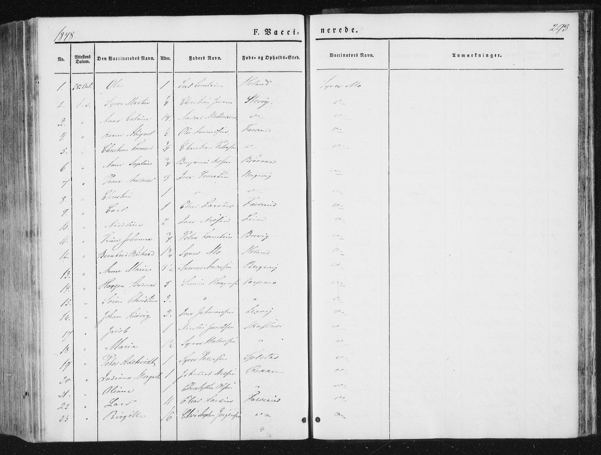 SAT, Ministerialprotokoller, klokkerbøker og fødselsregistre - Nord-Trøndelag, 780/L0640: Ministerialbok nr. 780A05, 1845-1856, s. 293
