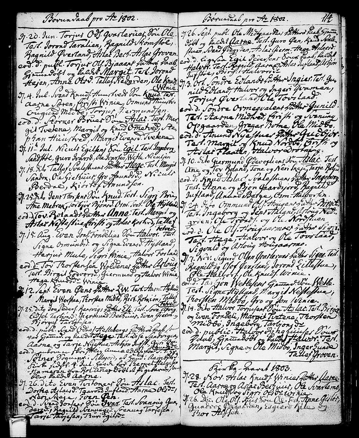 SAKO, Vinje kirkebøker, F/Fa/L0002: Ministerialbok nr. I 2, 1767-1814, s. 114