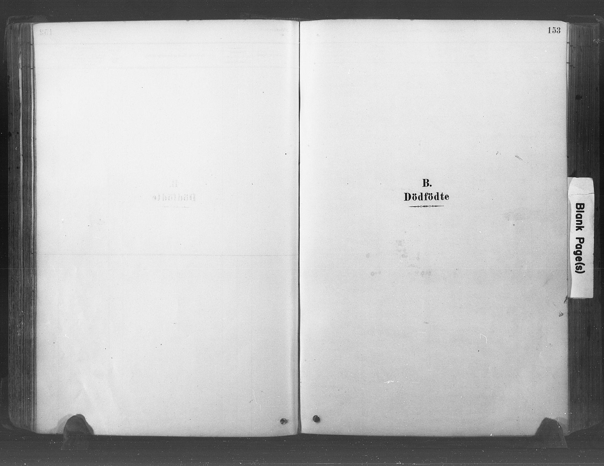 SAO, Råde prestekontor kirkebøker, F/Fa/L0007: Ministerialbok nr. 7, 1878-1902, s. 153