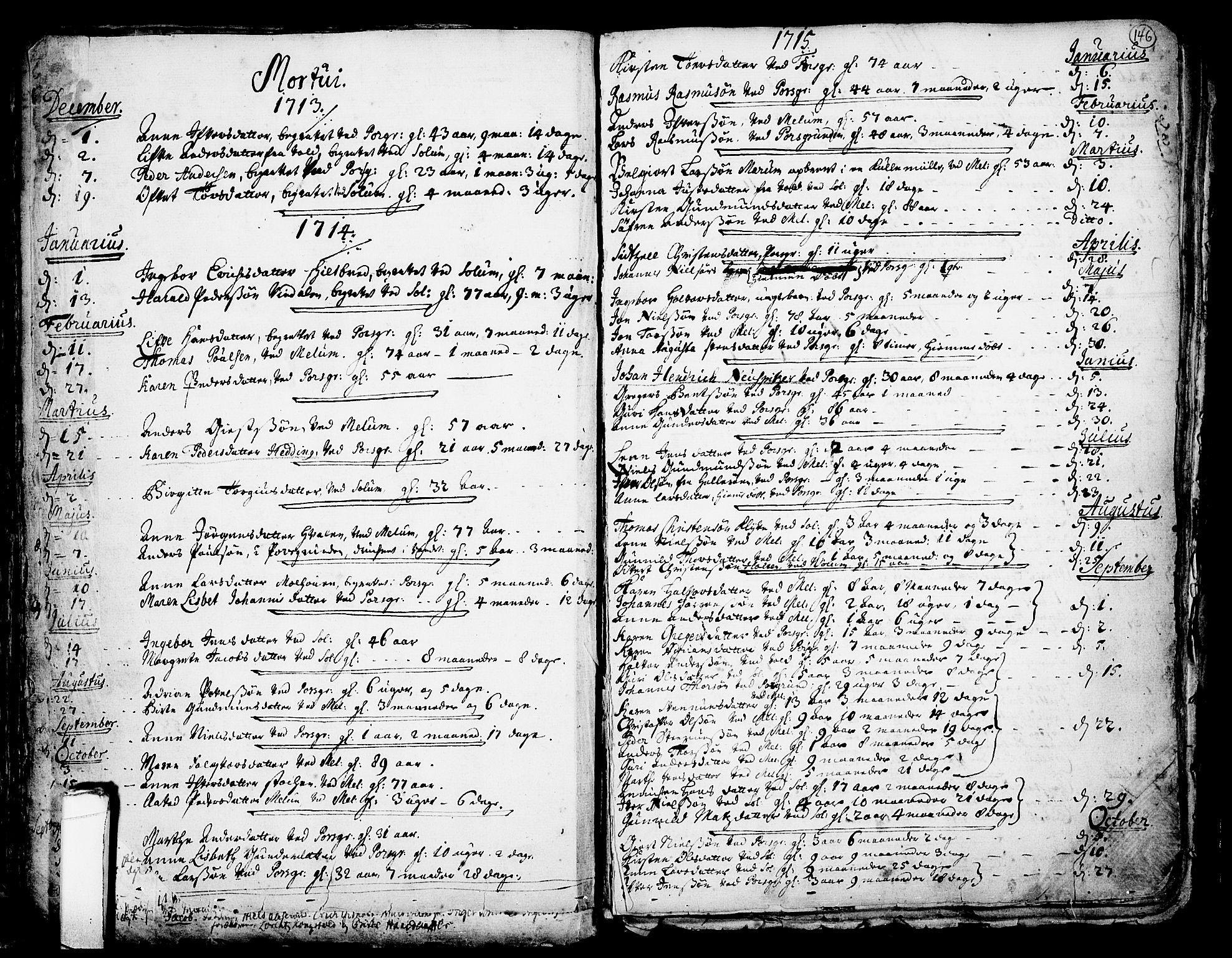SAKO, Solum kirkebøker, F/Fa/L0002: Ministerialbok nr. I 2, 1713-1761, s. 146