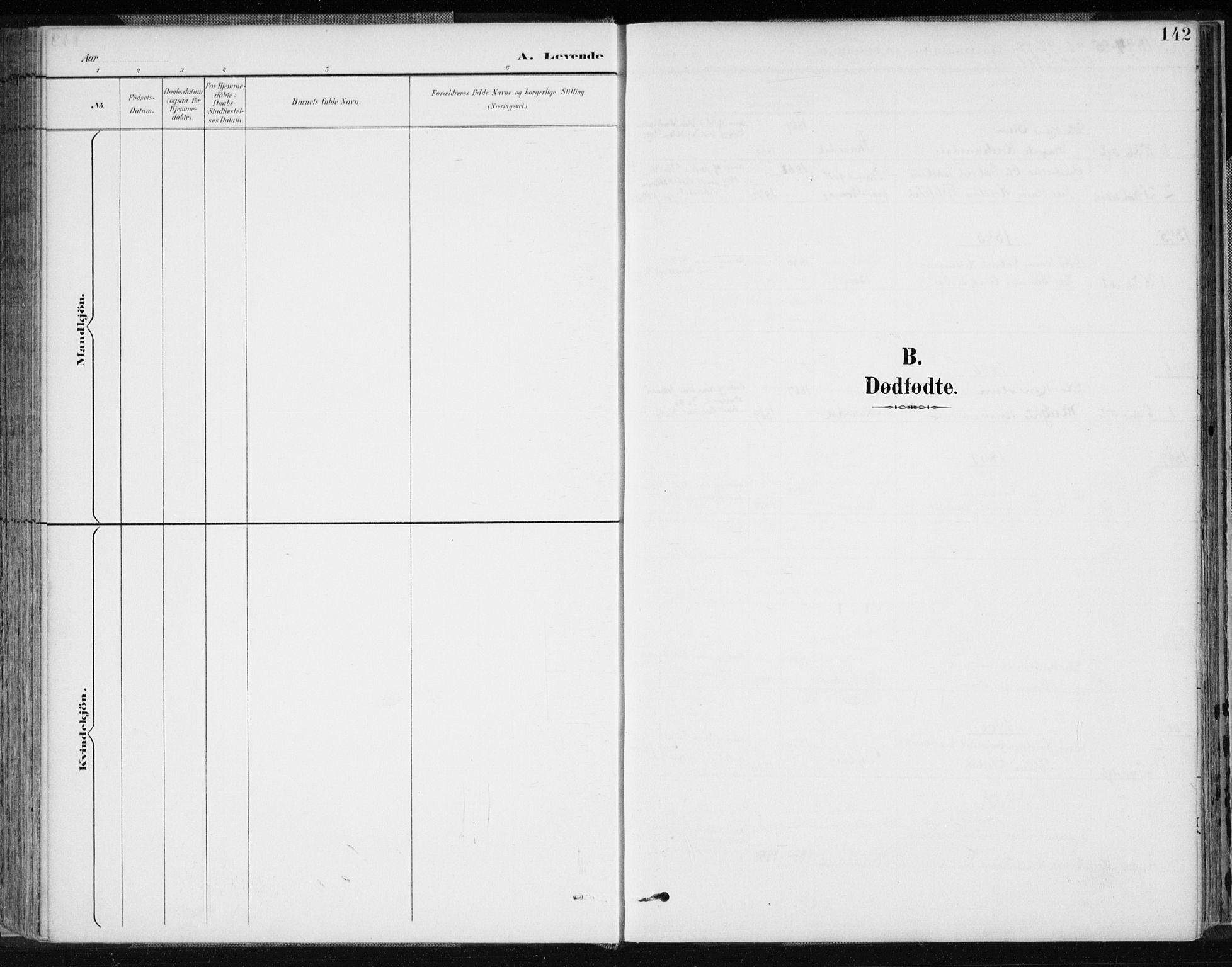 SAK, Lyngdal sokneprestkontor, F/Fa/Fac/L0012: Ministerialbok nr. A 12, 1894-1918, s. 142