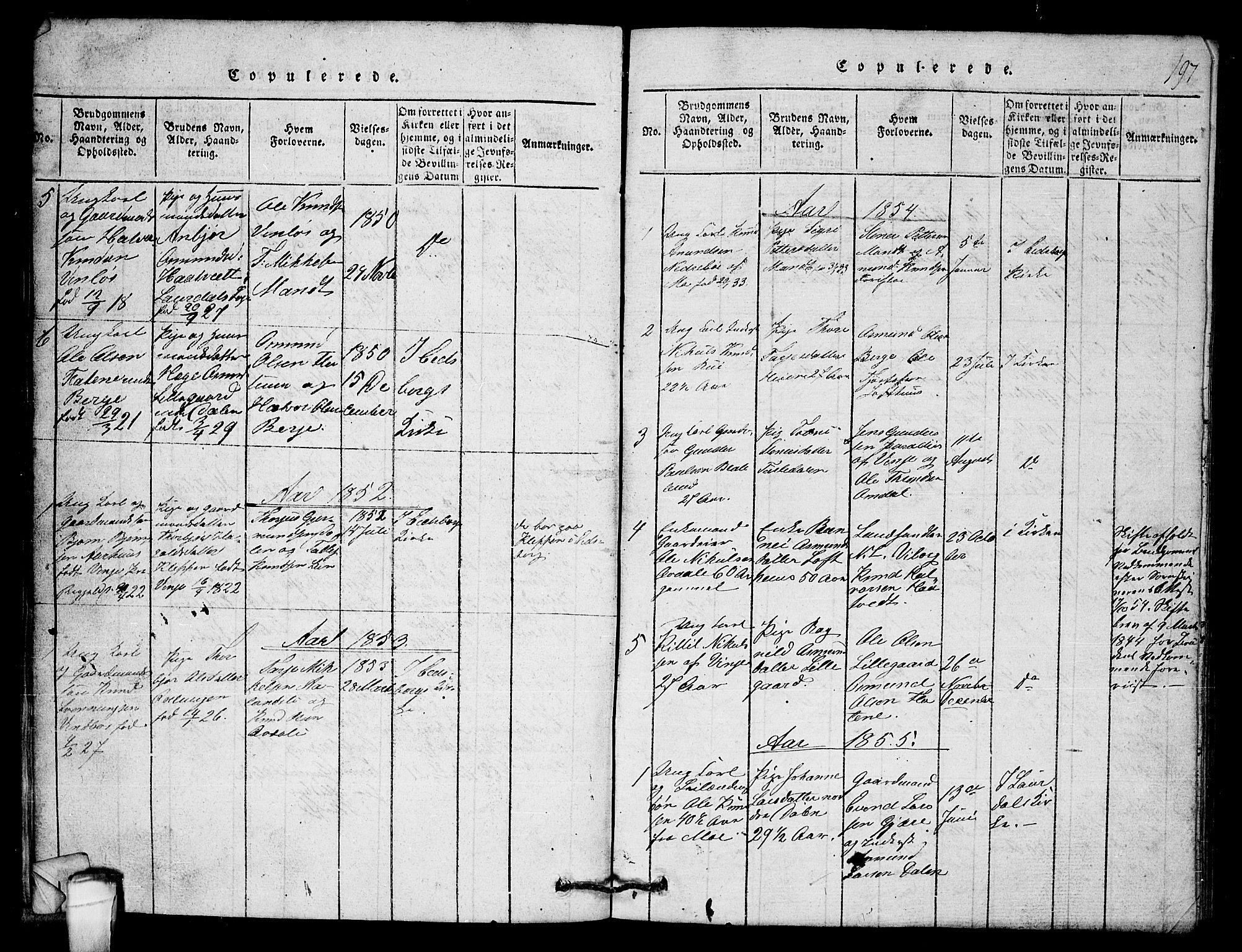 SAKO, Lårdal kirkebøker, G/Gb/L0001: Klokkerbok nr. II 1, 1815-1865, s. 197