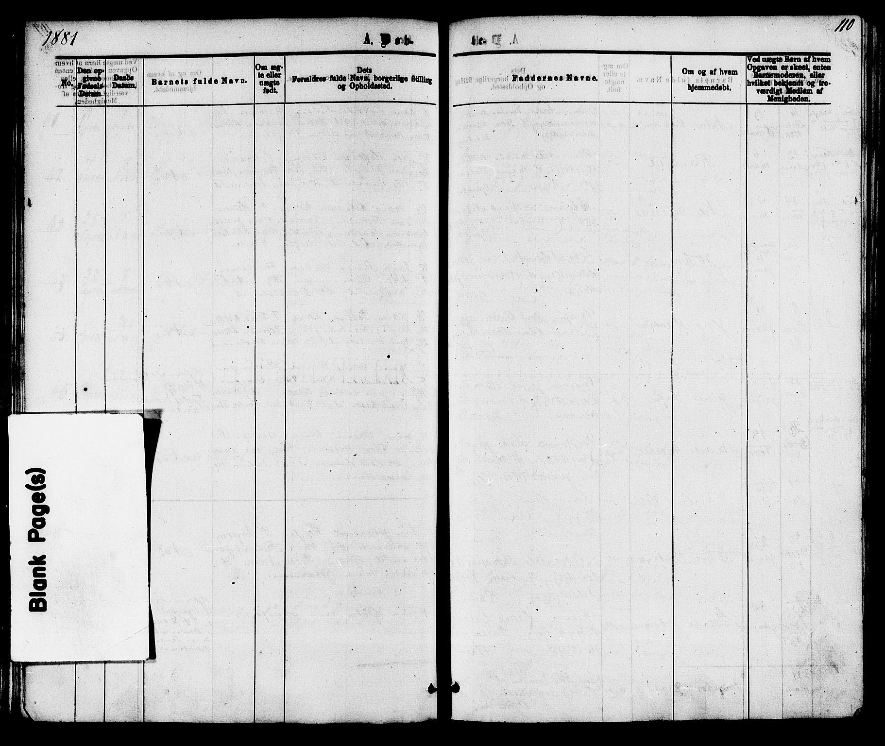 SAKO, Skåtøy kirkebøker, F/Fa/L0001: Ministerialbok nr. I 1, 1874-1883, s. 110