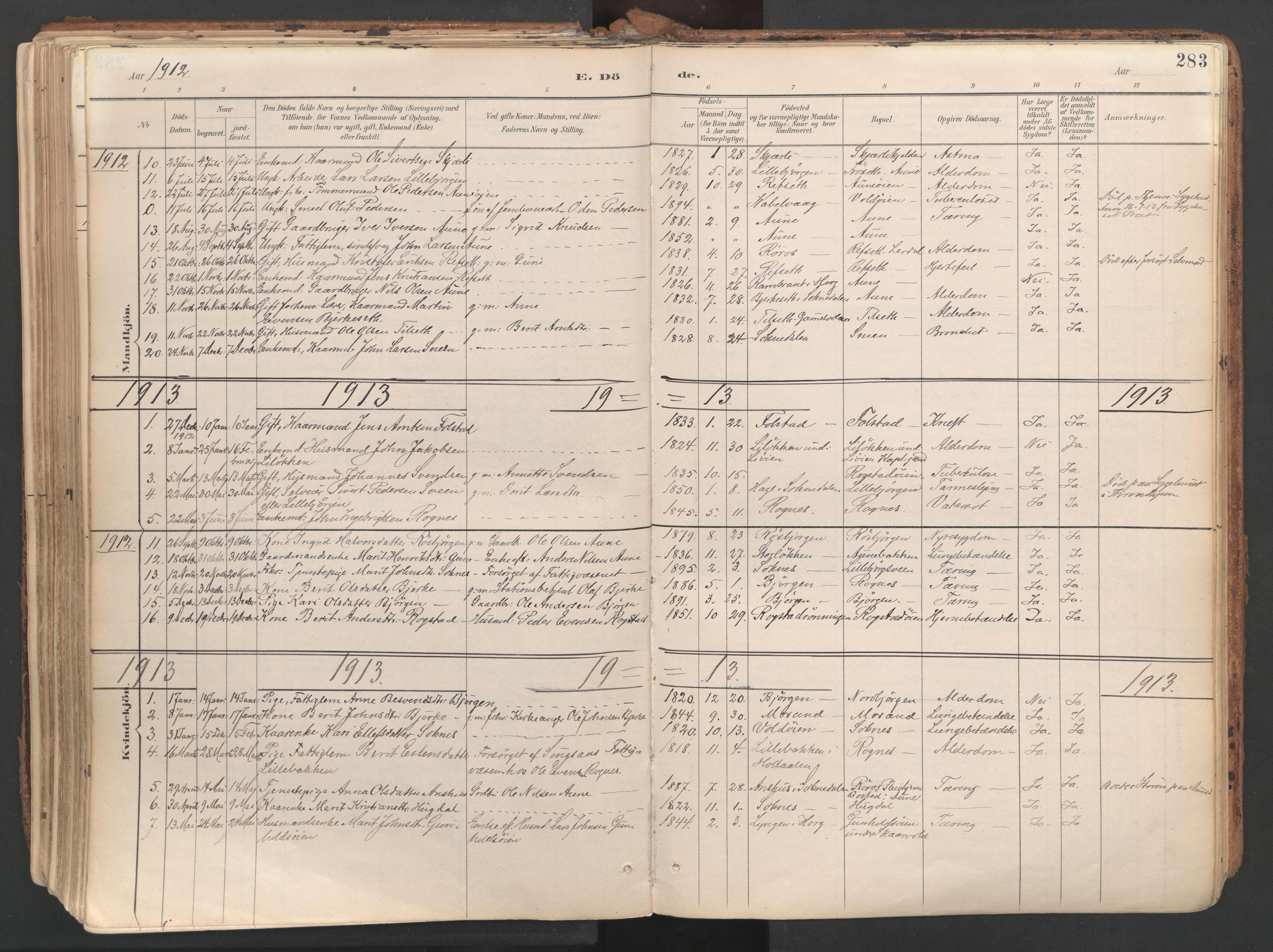 SAT, Ministerialprotokoller, klokkerbøker og fødselsregistre - Sør-Trøndelag, 687/L1004: Ministerialbok nr. 687A10, 1891-1923, s. 283