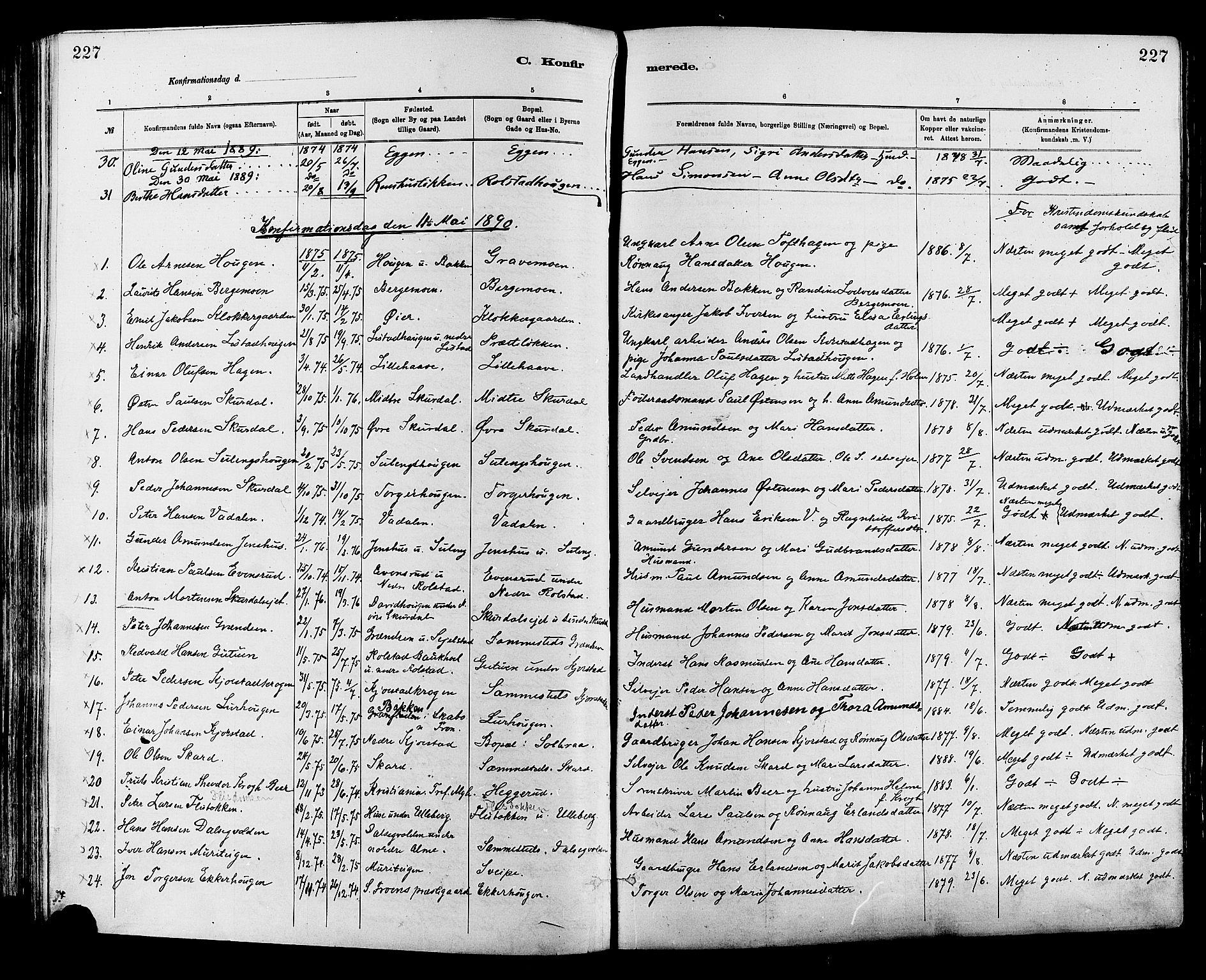 SAH, Sør-Fron prestekontor, H/Ha/Haa/L0003: Ministerialbok nr. 3, 1881-1897, s. 227