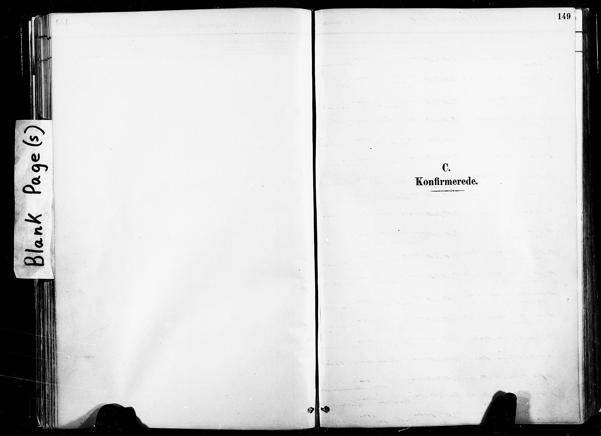 SAT, Ministerialprotokoller, klokkerbøker og fødselsregistre - Nord-Trøndelag, 735/L0351: Ministerialbok nr. 735A10, 1884-1908, s. 149