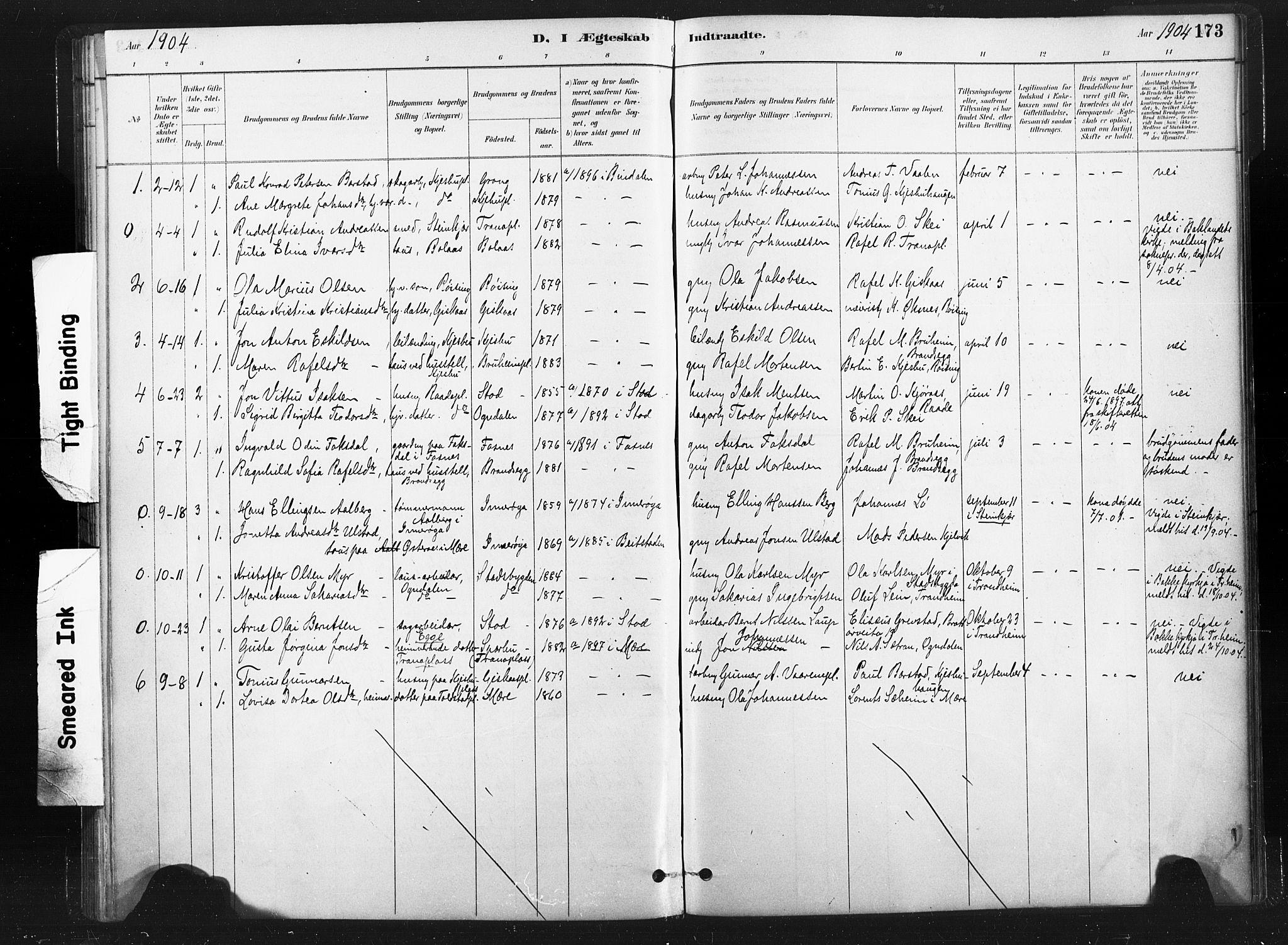 SAT, Ministerialprotokoller, klokkerbøker og fødselsregistre - Nord-Trøndelag, 736/L0361: Ministerialbok nr. 736A01, 1884-1906, s. 173