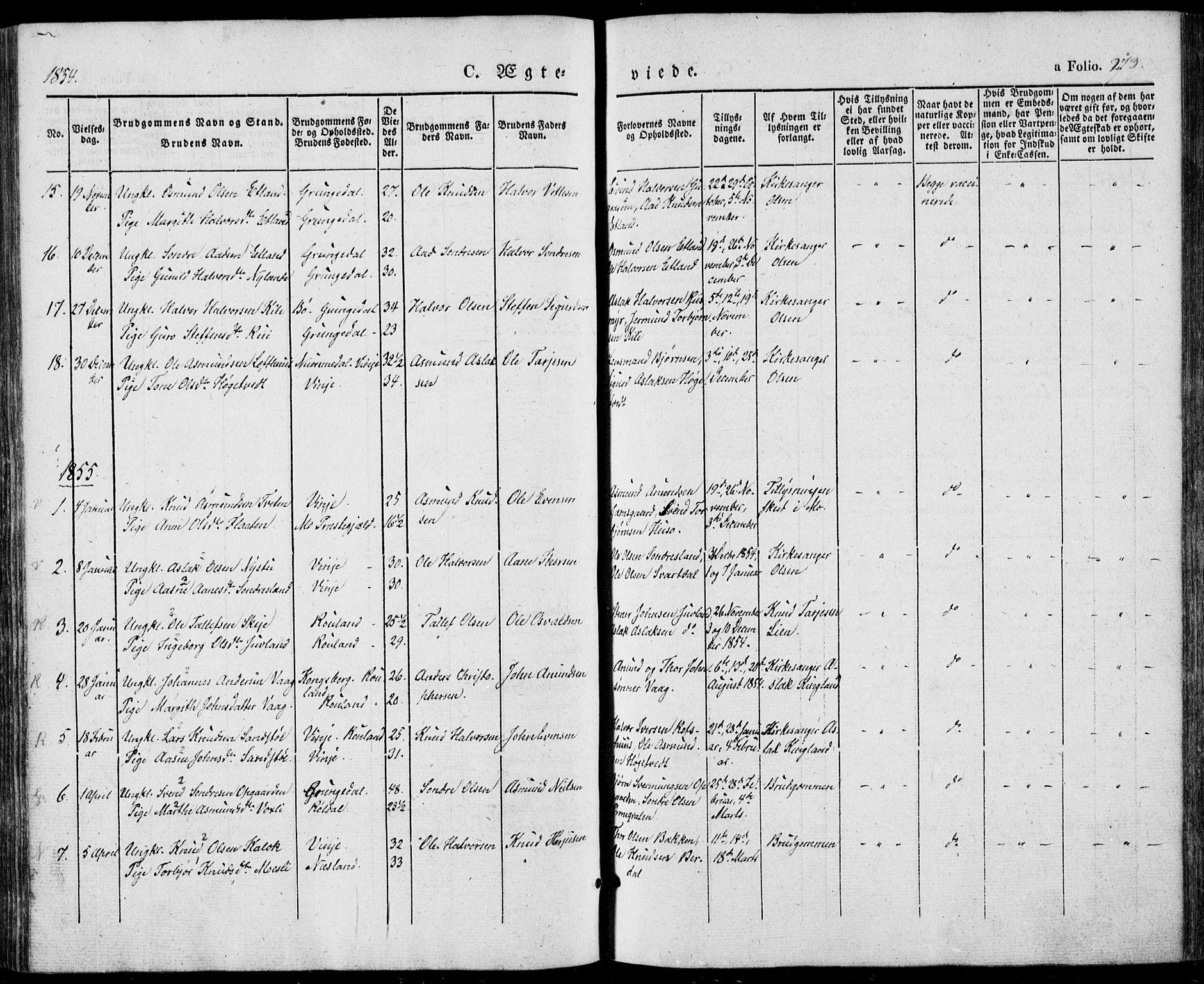 SAKO, Vinje kirkebøker, F/Fa/L0004: Ministerialbok nr. I 4, 1843-1869, s. 273