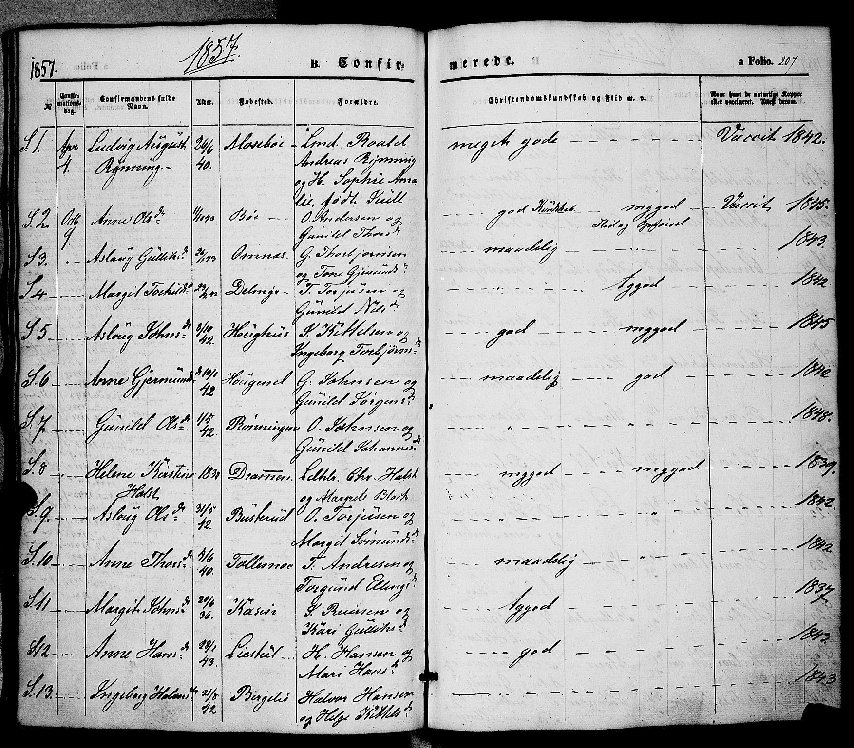 SAKO, Hjartdal kirkebøker, F/Fa/L0008: Ministerialbok nr. I 8, 1844-1859, s. 207