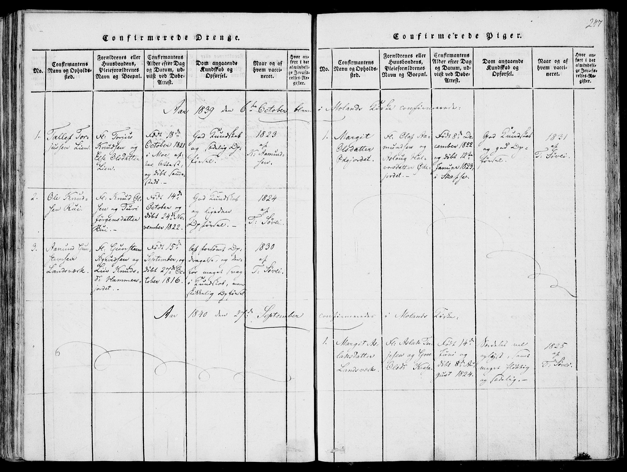 SAKO, Fyresdal kirkebøker, F/Fa/L0004: Ministerialbok nr. I 4, 1815-1854, s. 247