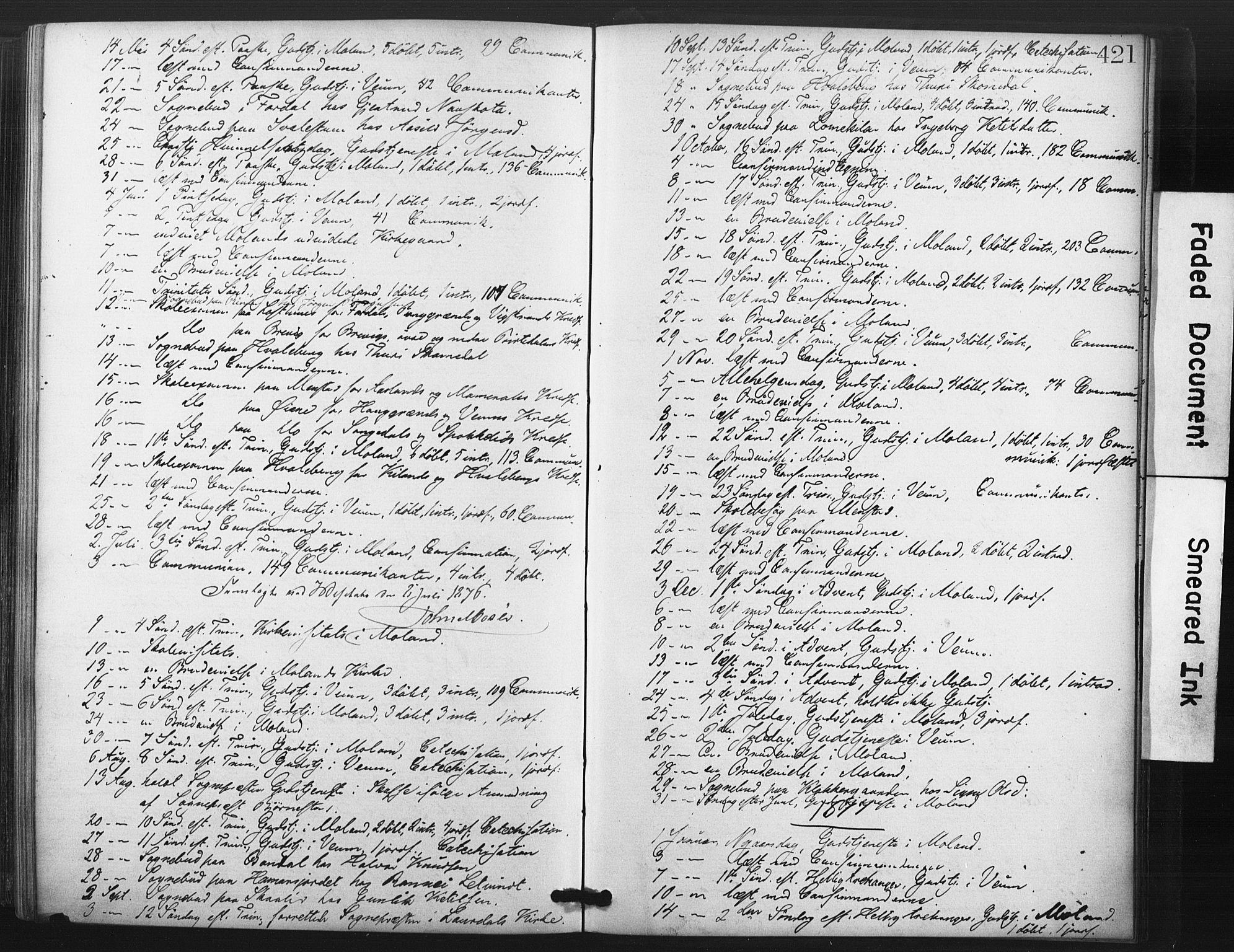 SAKO, Fyresdal kirkebøker, F/Fa/L0006: Ministerialbok nr. I 6, 1872-1886, s. 421