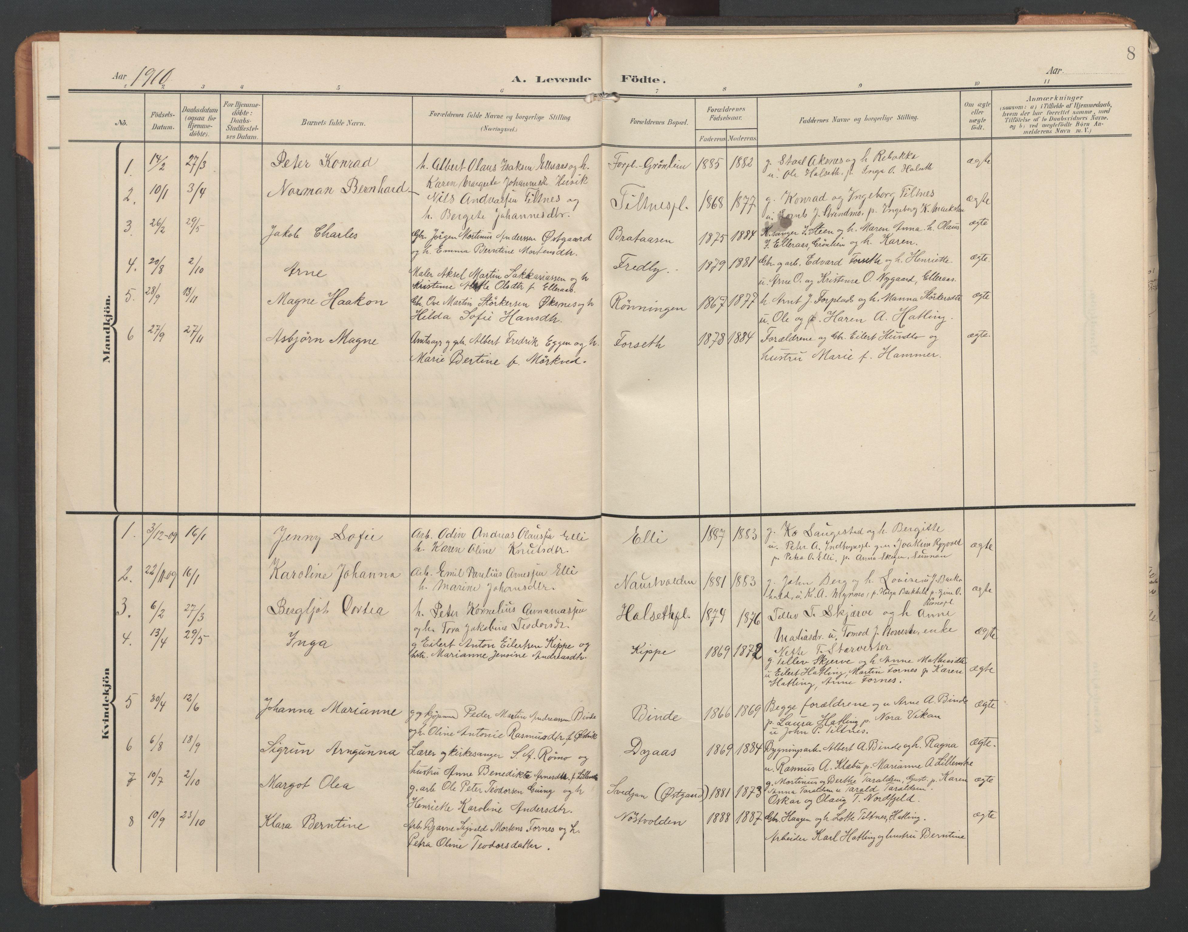 SAT, Ministerialprotokoller, klokkerbøker og fødselsregistre - Nord-Trøndelag, 746/L0455: Klokkerbok nr. 746C01, 1908-1933, s. 8