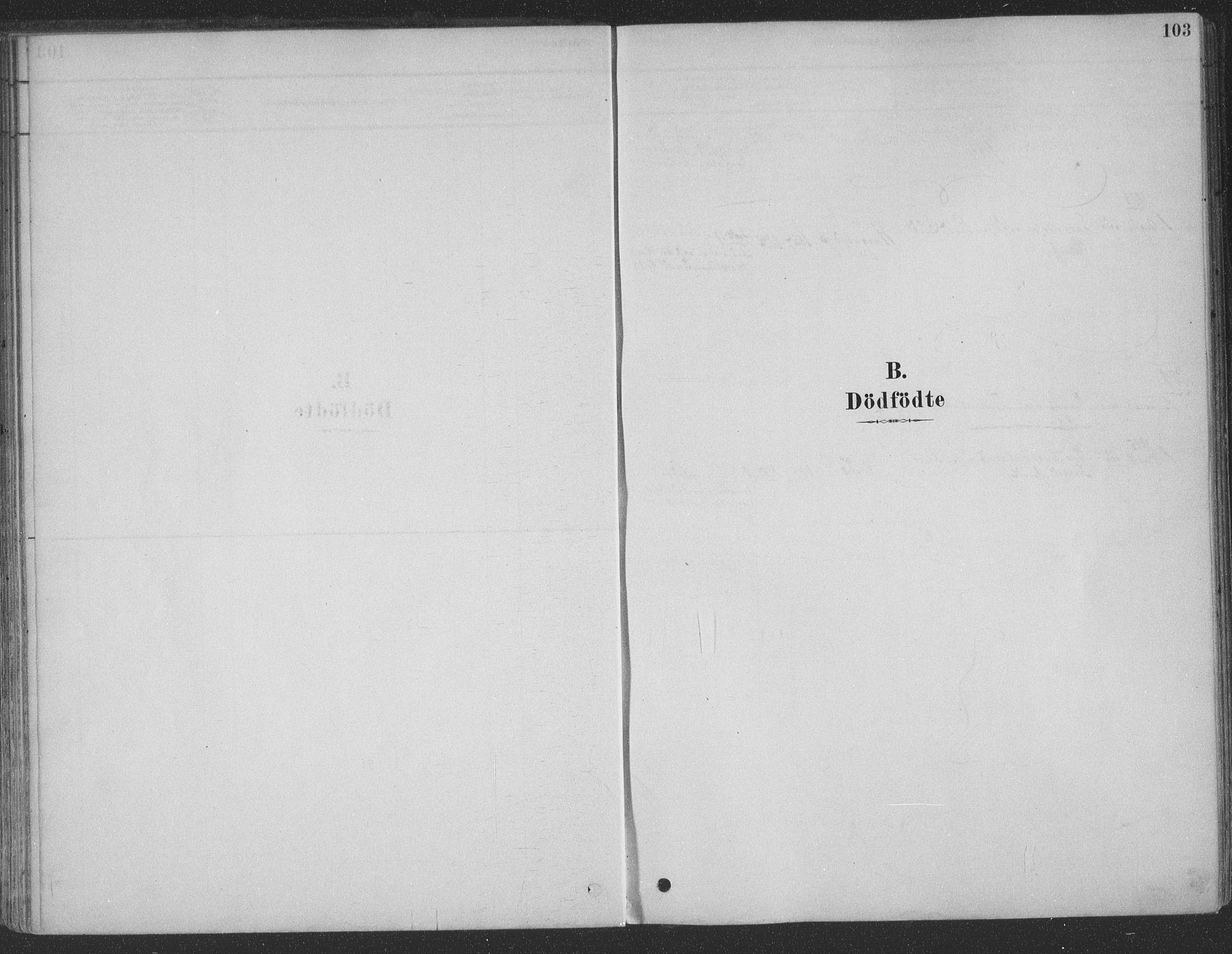 SAT, Ministerialprotokoller, klokkerbøker og fødselsregistre - Møre og Romsdal, 547/L0604: Ministerialbok nr. 547A06, 1878-1906, s. 103