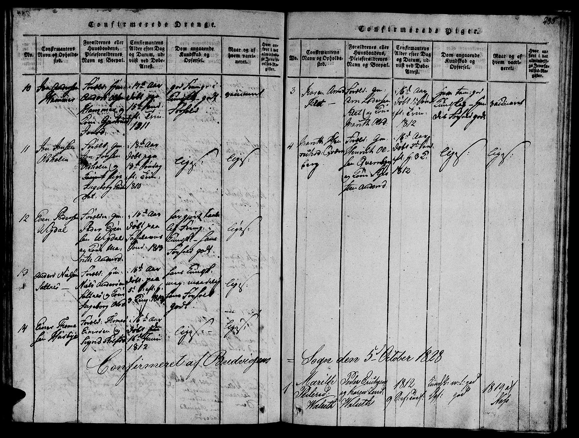 SAT, Ministerialprotokoller, klokkerbøker og fødselsregistre - Sør-Trøndelag, 612/L0373: Ministerialbok nr. 612A06 /2, 1816-1828, s. 285