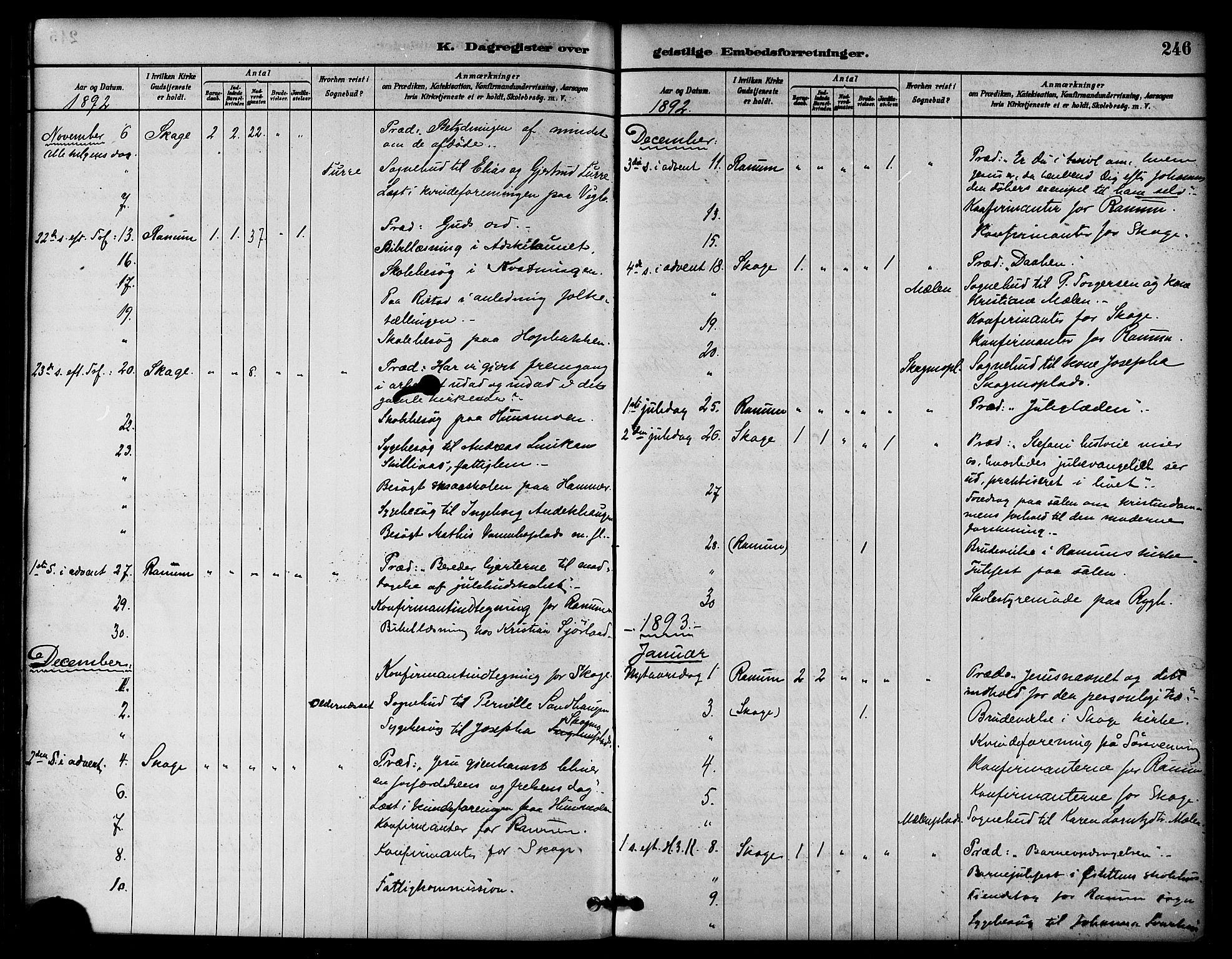 SAT, Ministerialprotokoller, klokkerbøker og fødselsregistre - Nord-Trøndelag, 764/L0555: Ministerialbok nr. 764A10, 1881-1896, s. 246