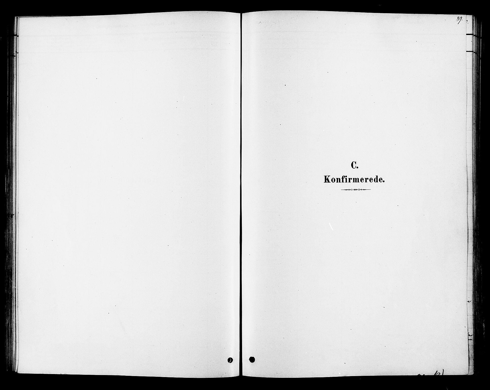 SAH, Ringsaker prestekontor, K/Ka/L0013: Ministerialbok nr. 13, 1879-1890, s. 89