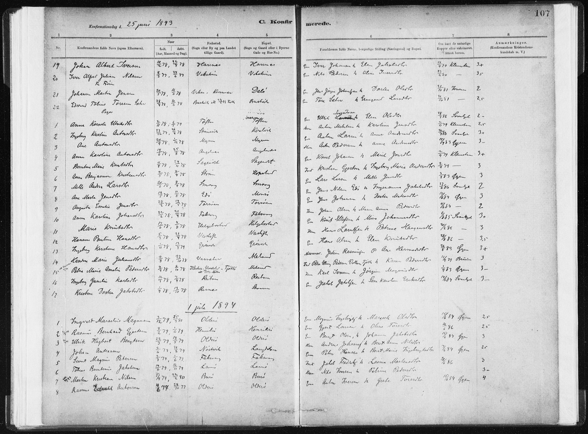 SAT, Ministerialprotokoller, klokkerbøker og fødselsregistre - Sør-Trøndelag, 634/L0533: Ministerialbok nr. 634A09, 1882-1901, s. 107