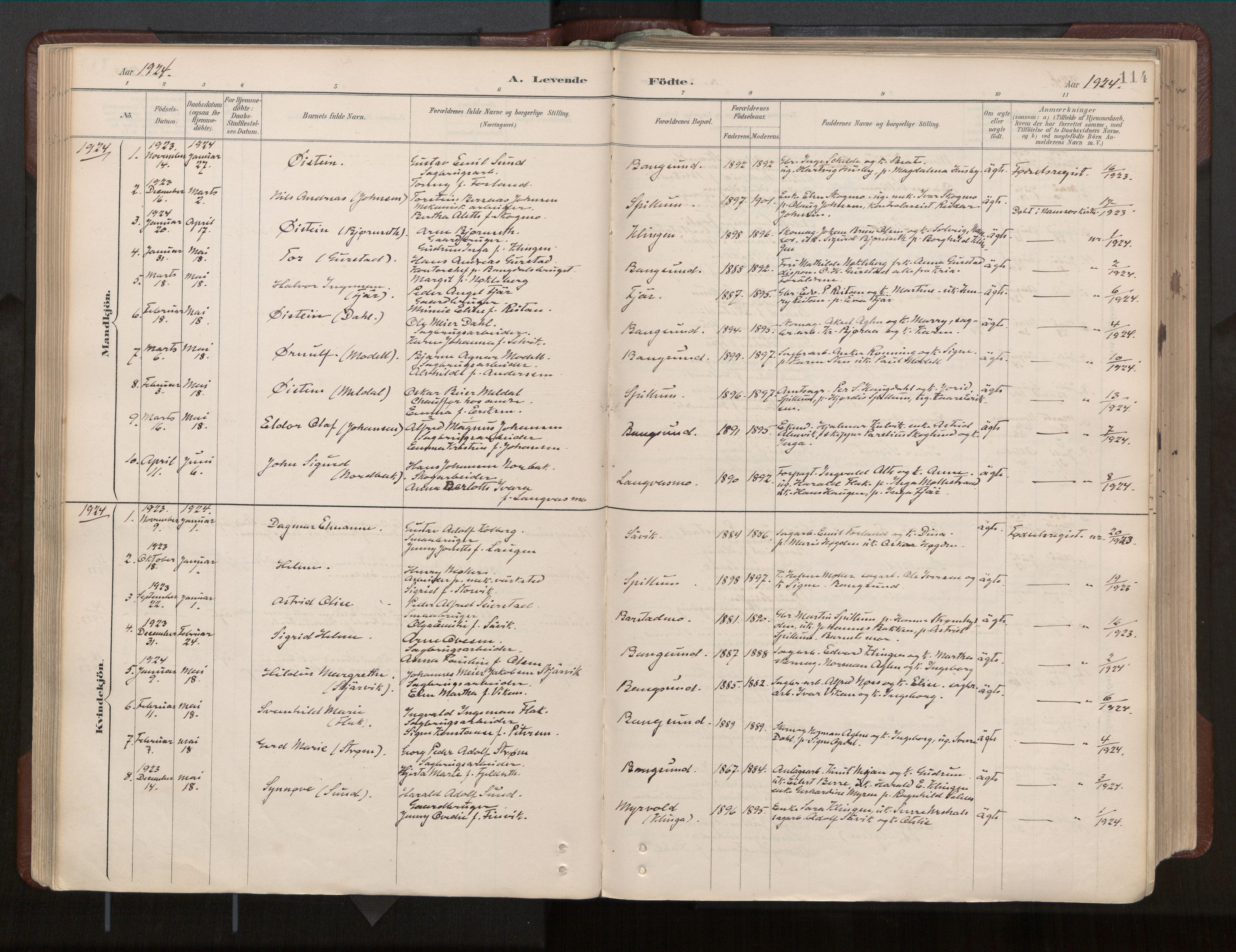 SAT, Ministerialprotokoller, klokkerbøker og fødselsregistre - Nord-Trøndelag, 770/L0589: Ministerialbok nr. 770A03, 1887-1929, s. 114