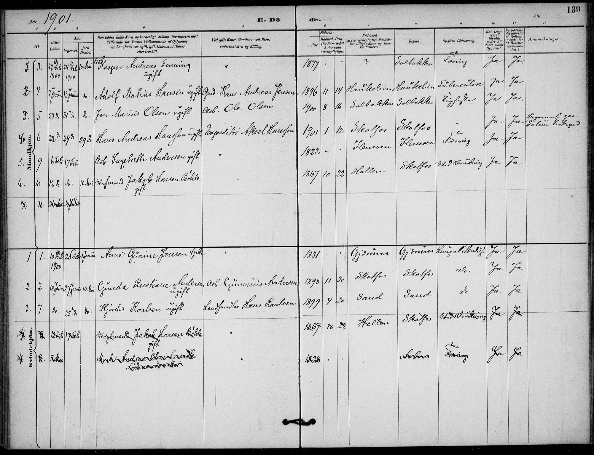 SAKO, Solum kirkebøker, F/Fb/L0002: Ministerialbok nr. II 2, 1893-1901, s. 139