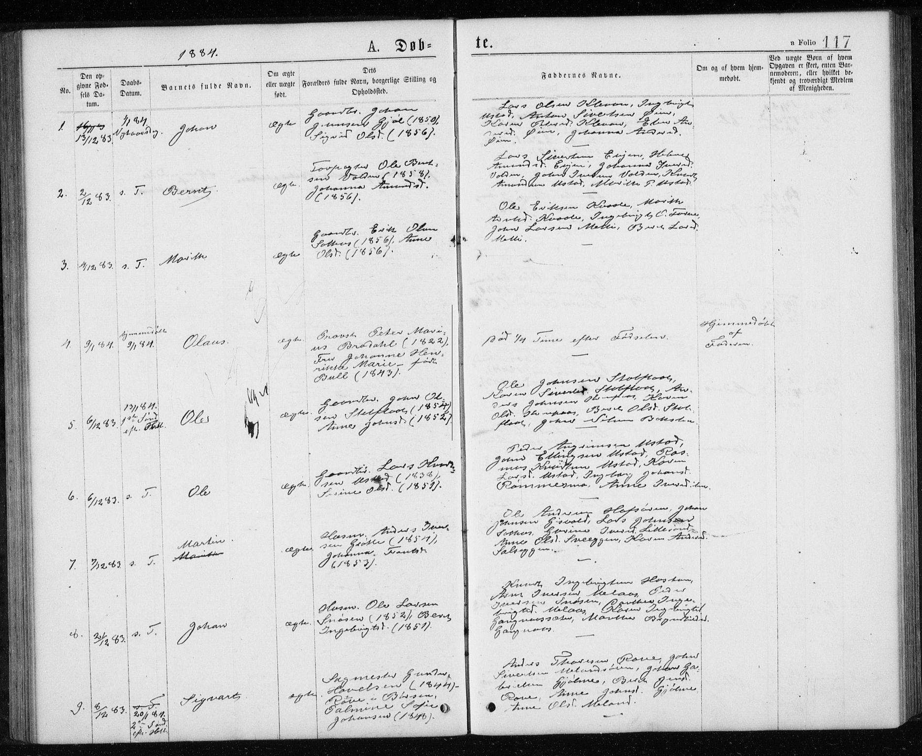 SAT, Ministerialprotokoller, klokkerbøker og fødselsregistre - Sør-Trøndelag, 668/L0817: Klokkerbok nr. 668C06, 1873-1884, s. 117