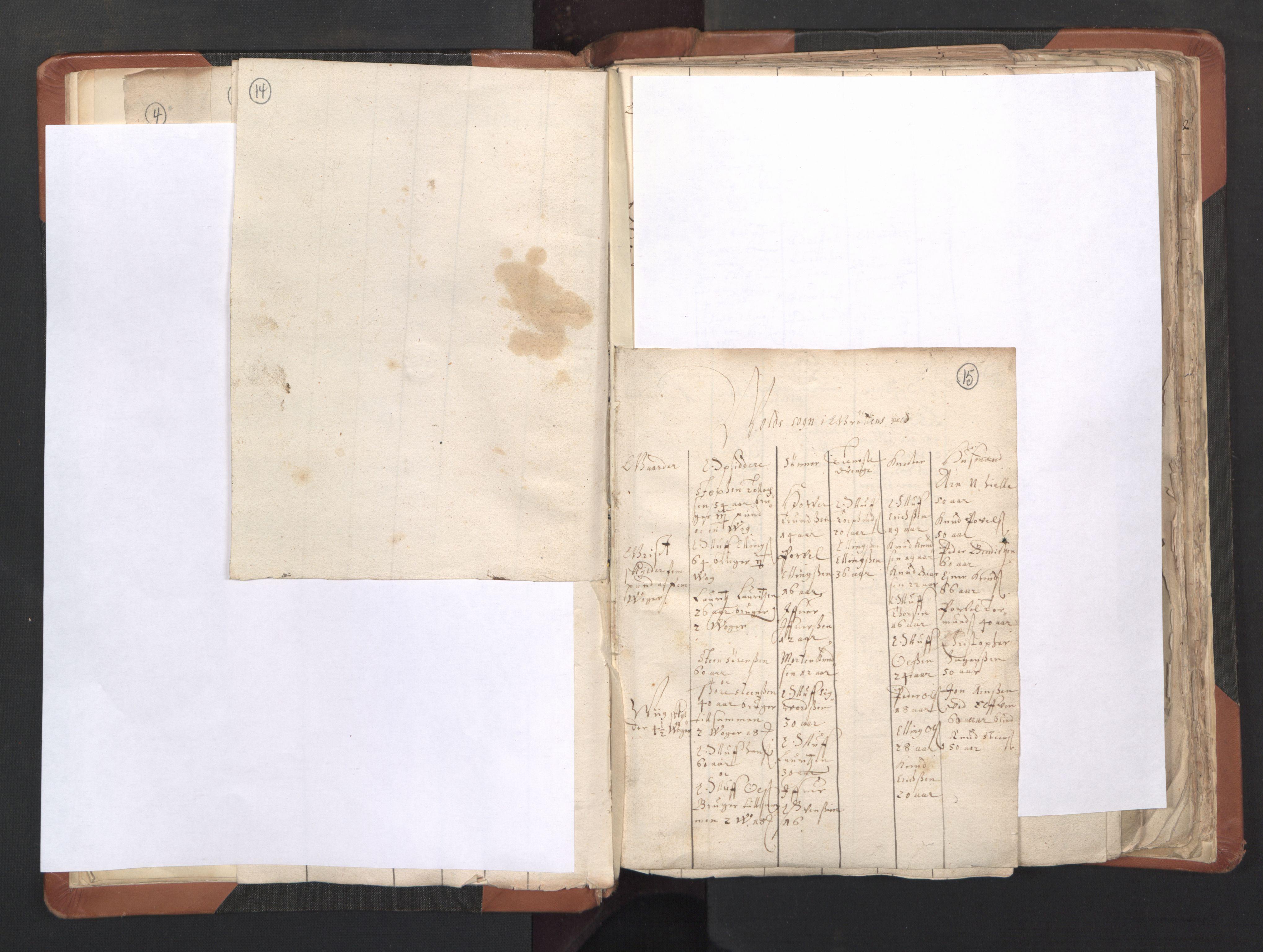 RA, Sogneprestenes manntall 1664-1666, nr. 27: Romsdal prosti, 1664-1666, s. 14-15