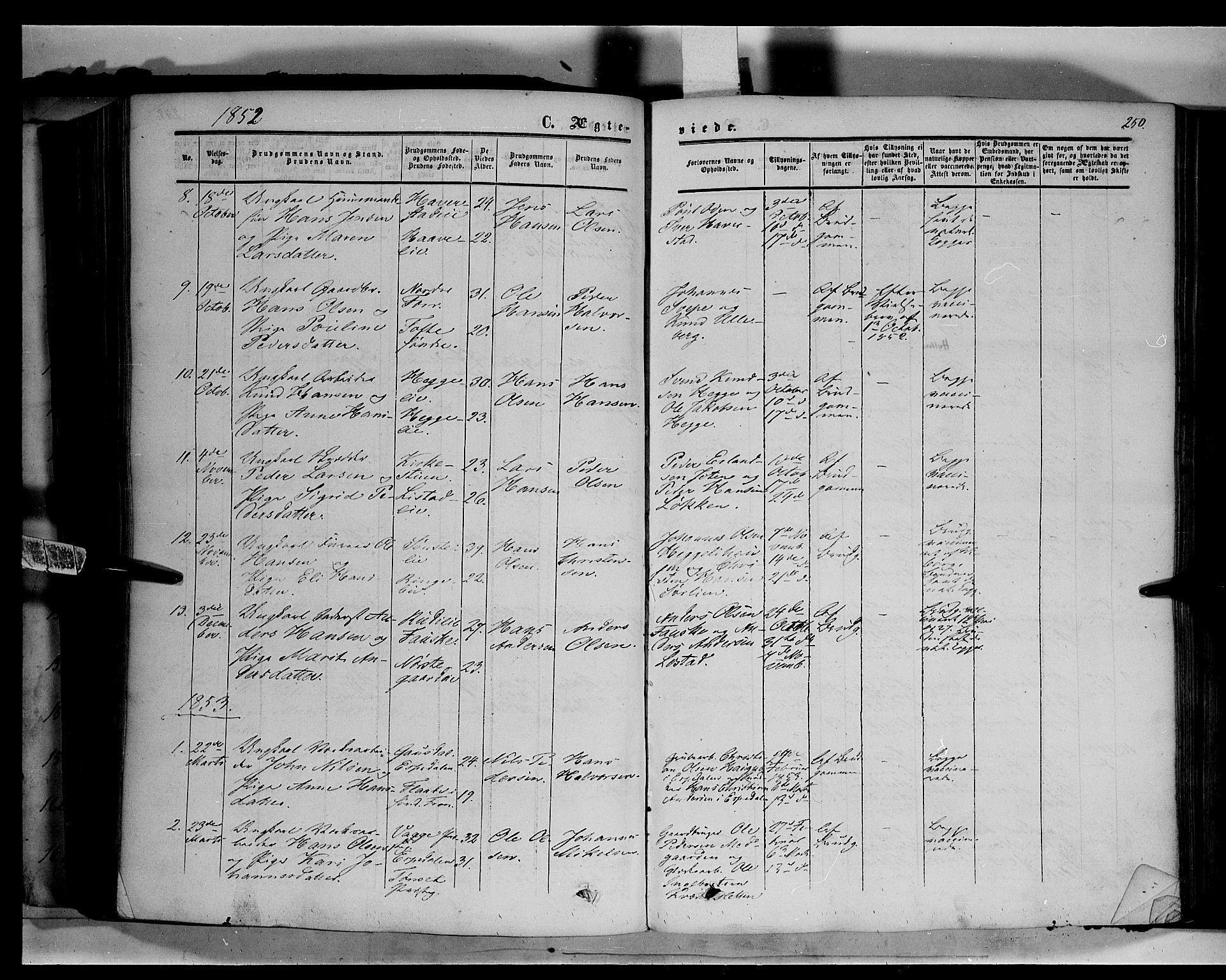 SAH, Sør-Fron prestekontor, H/Ha/Haa/L0001: Ministerialbok nr. 1, 1849-1863, s. 250