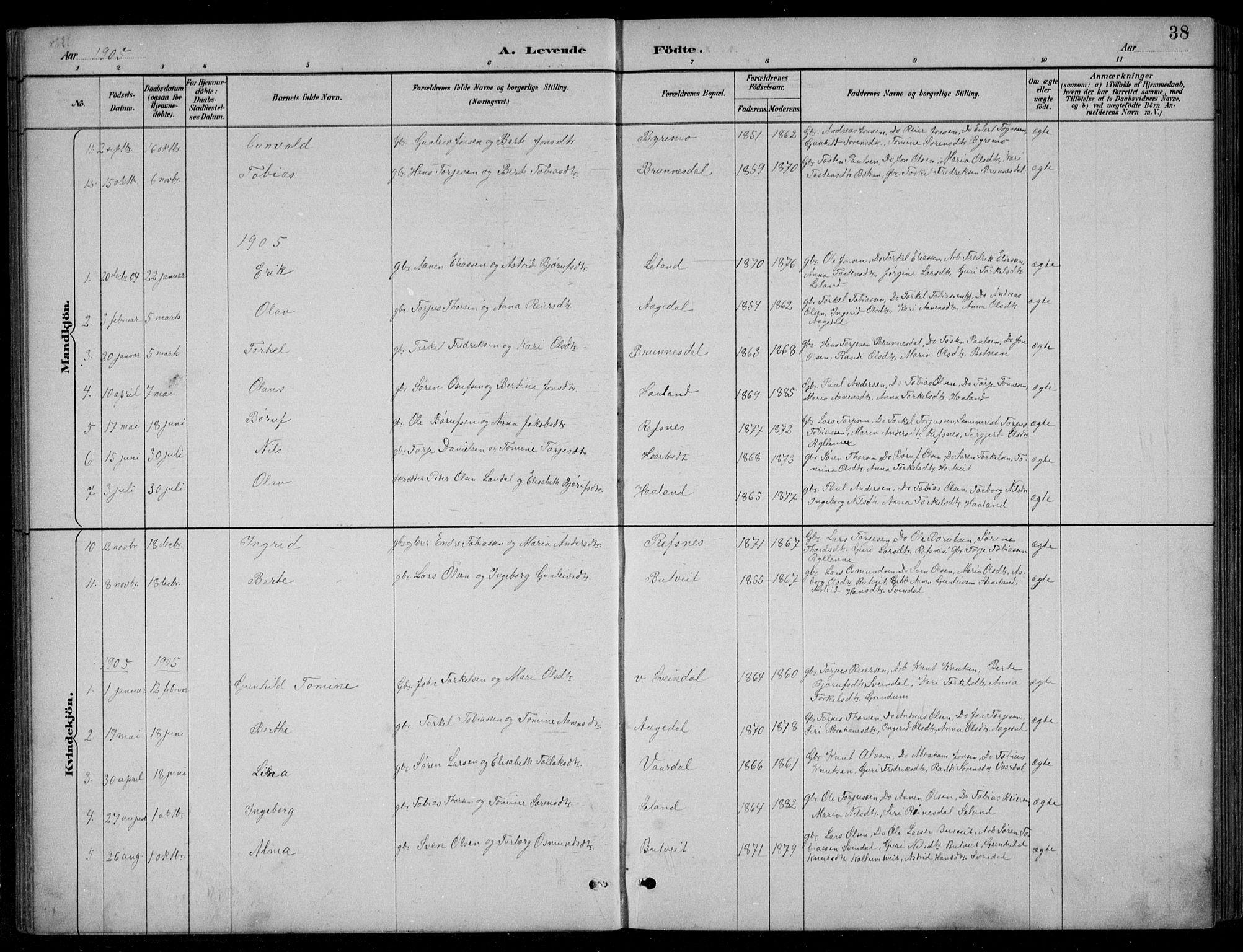 SAK, Bjelland sokneprestkontor, F/Fb/Fbc/L0003: Klokkerbok nr. B 3, 1887-1924, s. 38