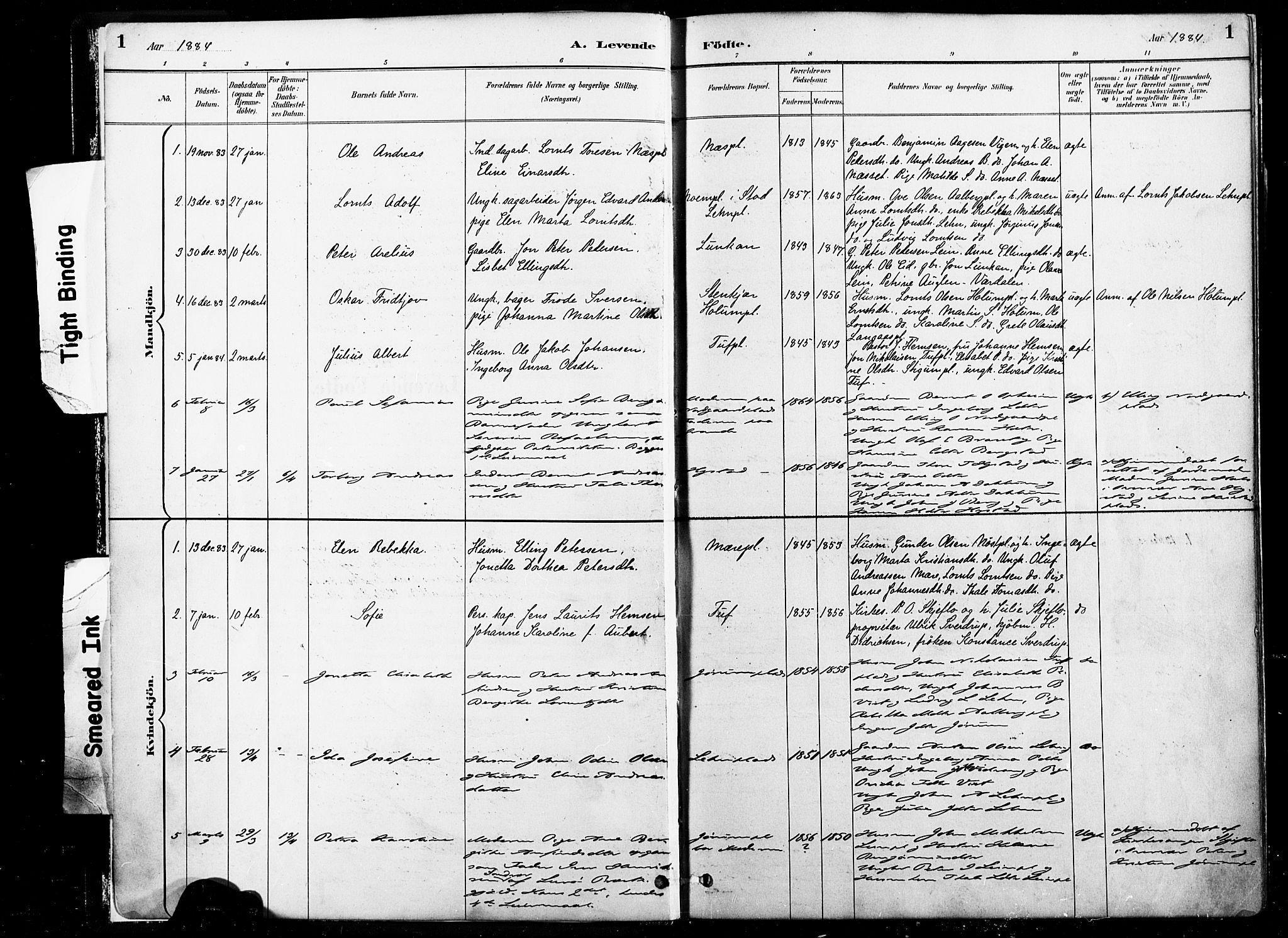 SAT, Ministerialprotokoller, klokkerbøker og fødselsregistre - Nord-Trøndelag, 735/L0351: Ministerialbok nr. 735A10, 1884-1908, s. 1