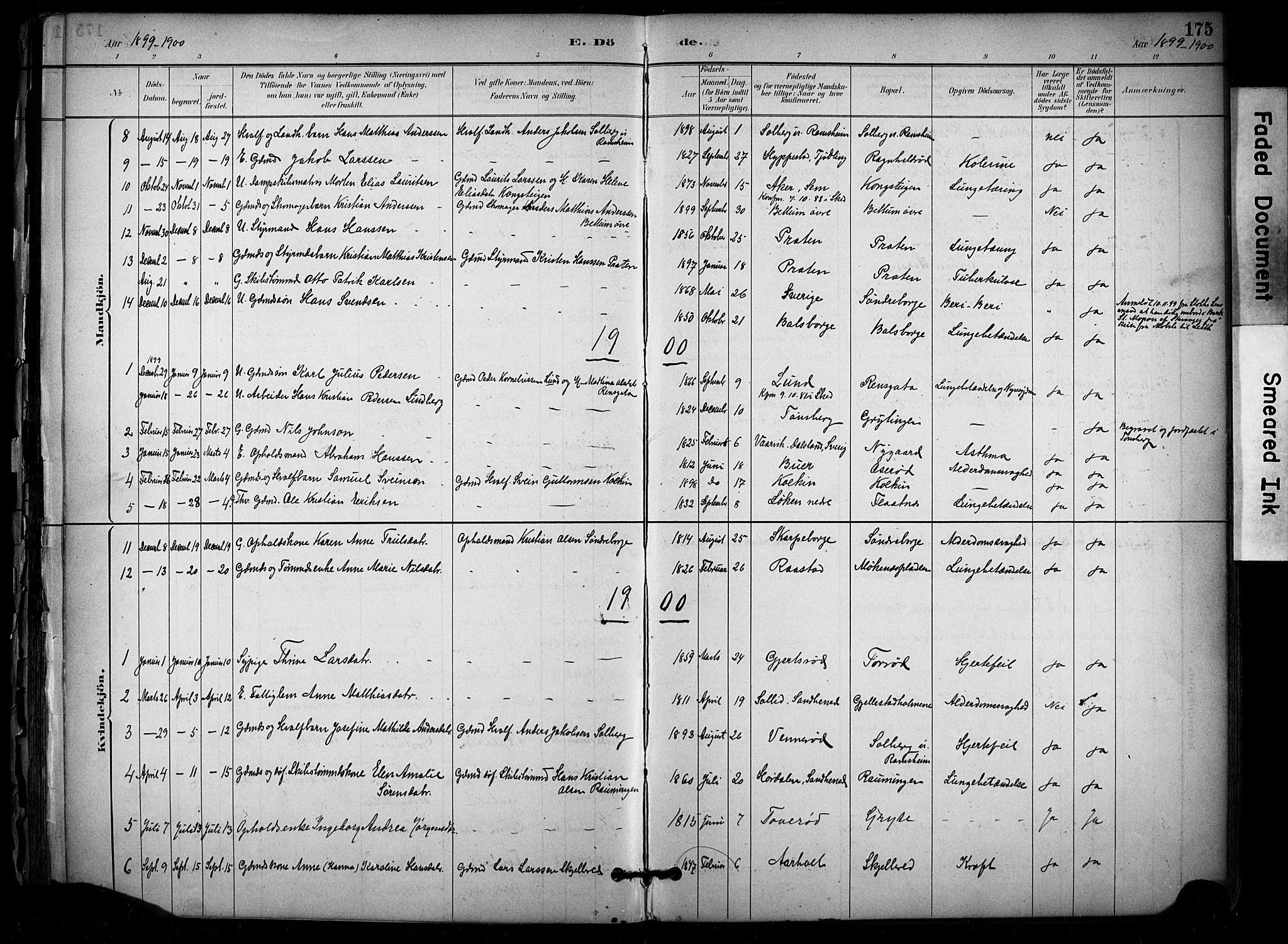 SAKO, Stokke kirkebøker, F/Fb/L0001: Ministerialbok nr. II 1, 1884-1910, s. 175