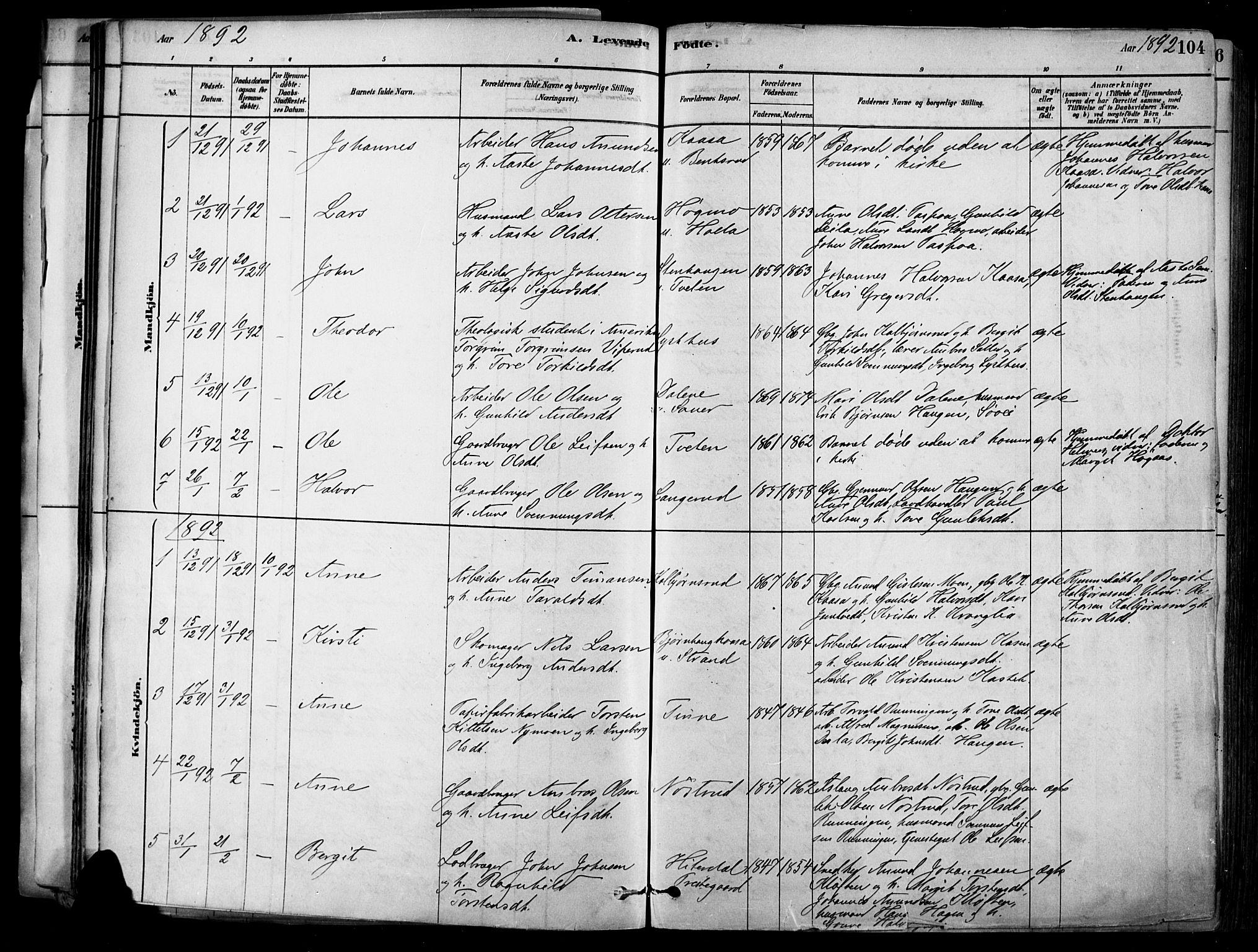 SAKO, Heddal kirkebøker, F/Fa/L0008: Ministerialbok nr. I 8, 1878-1903, s. 104